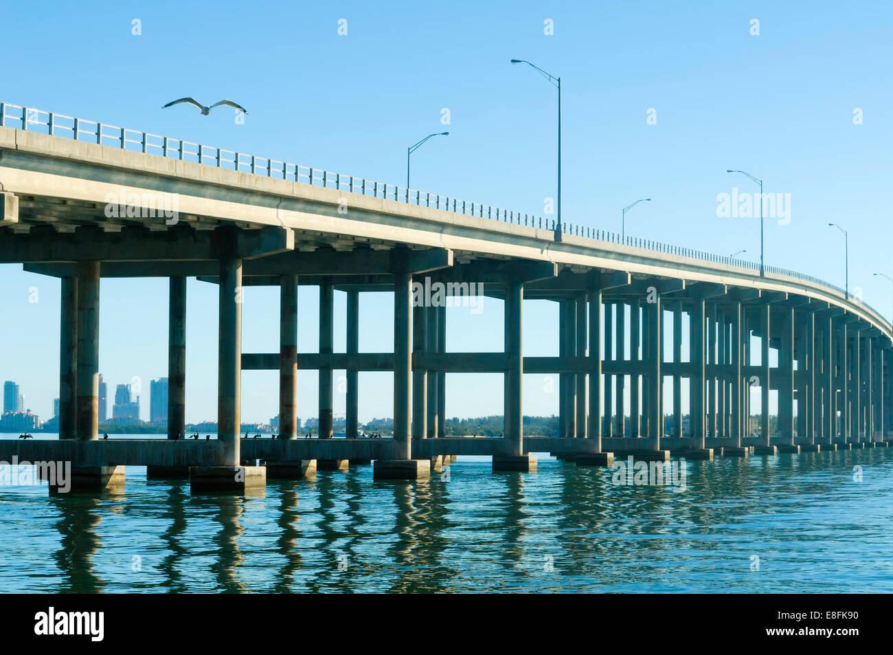 USA, Florida, Biscayne Bay, Seagull flying over long traffic bridge - Stock Image