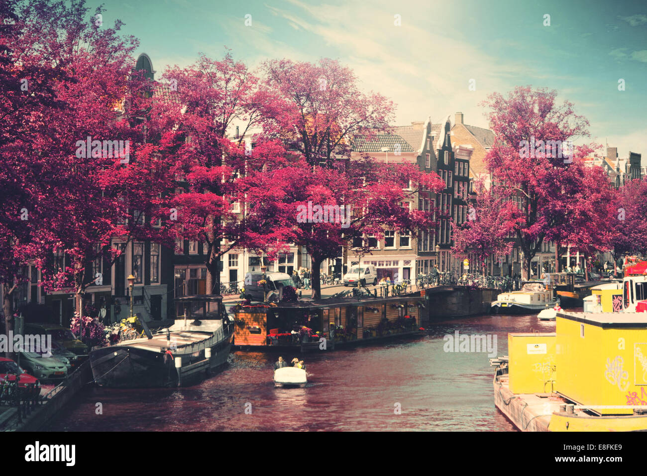 Holland, Amsterdam, Houseboats on canal - Stock Image