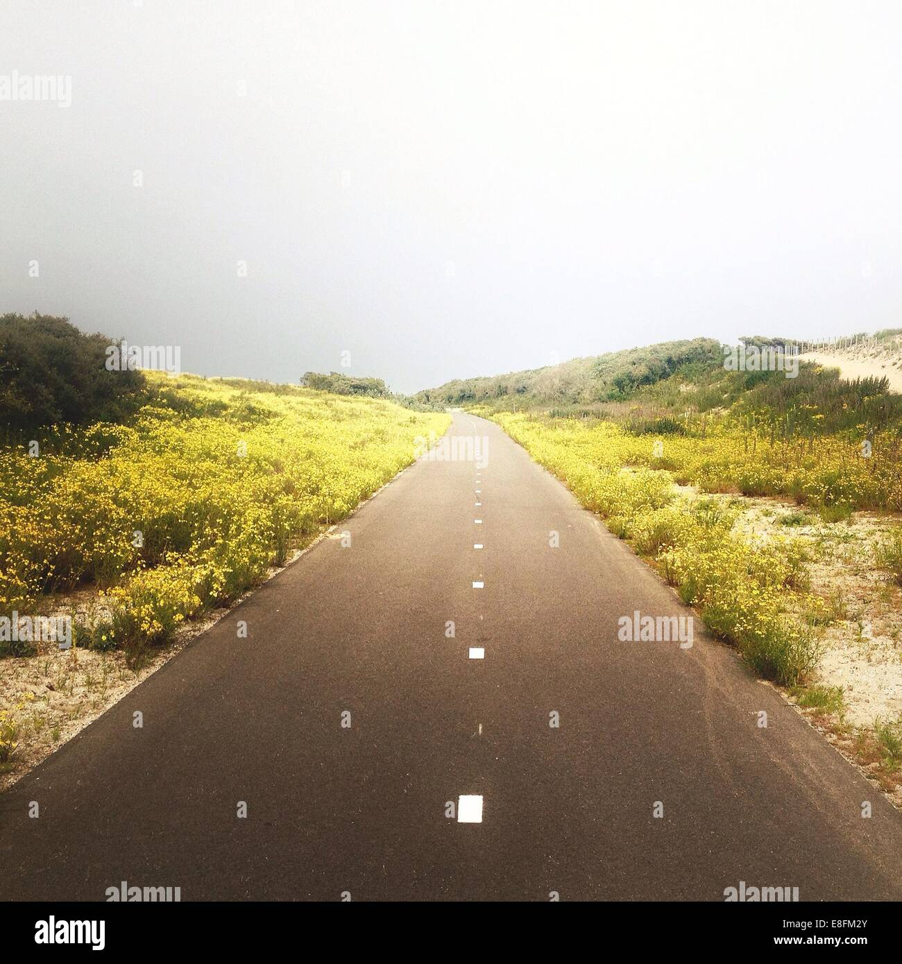 Landscape with road - Stock Image