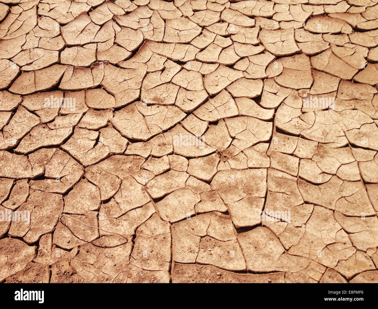 USA, Nevada, Cracked earth, Dried out land in drought - Stock Image