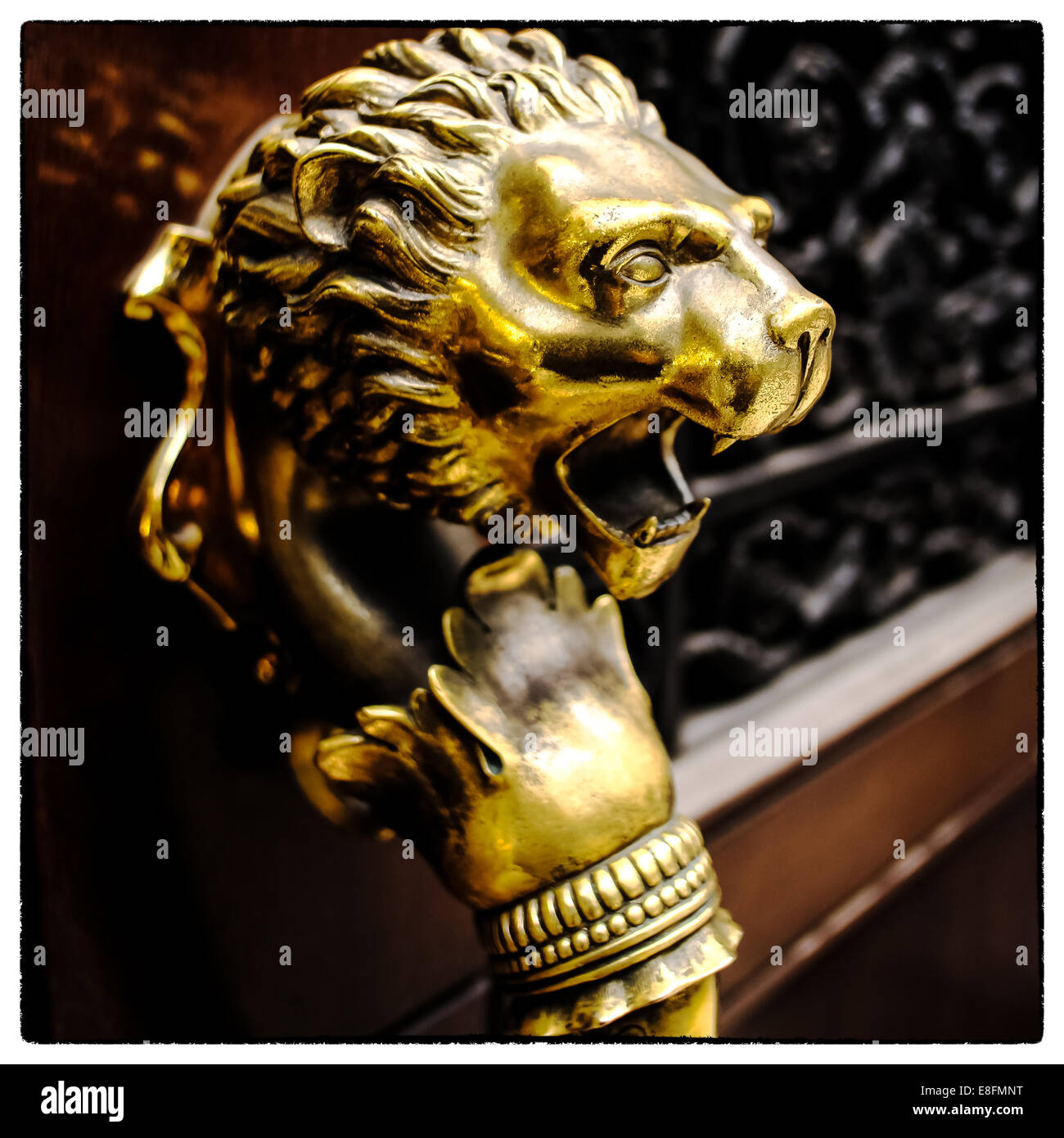 USA, New York State, New York City, Close up of gold lion - Stock Image