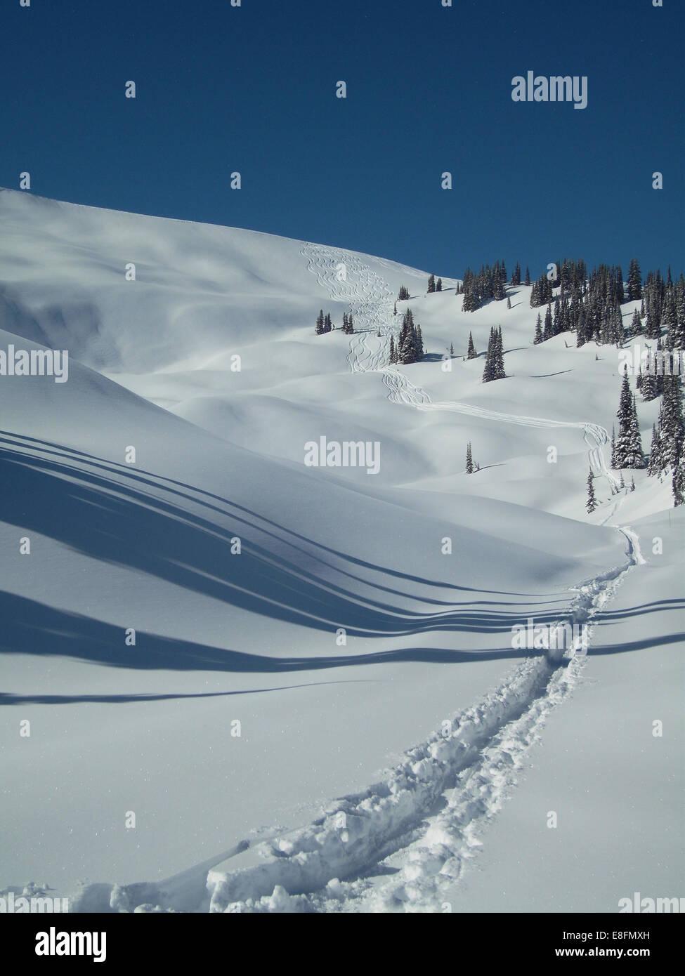 Fresh tracks in snow - Stock Image
