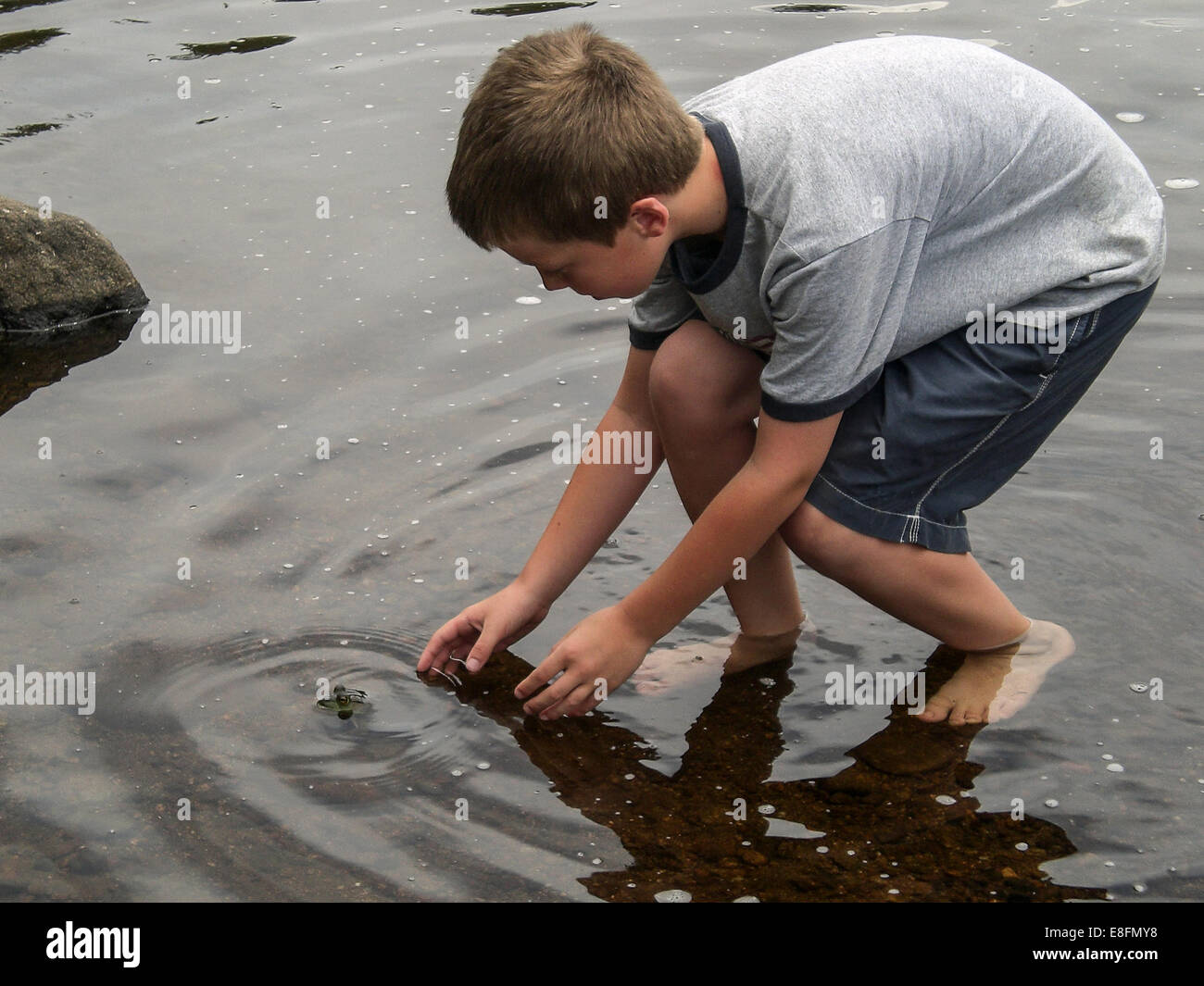 Boy (8-9) catching a frog in a lake - Stock Image
