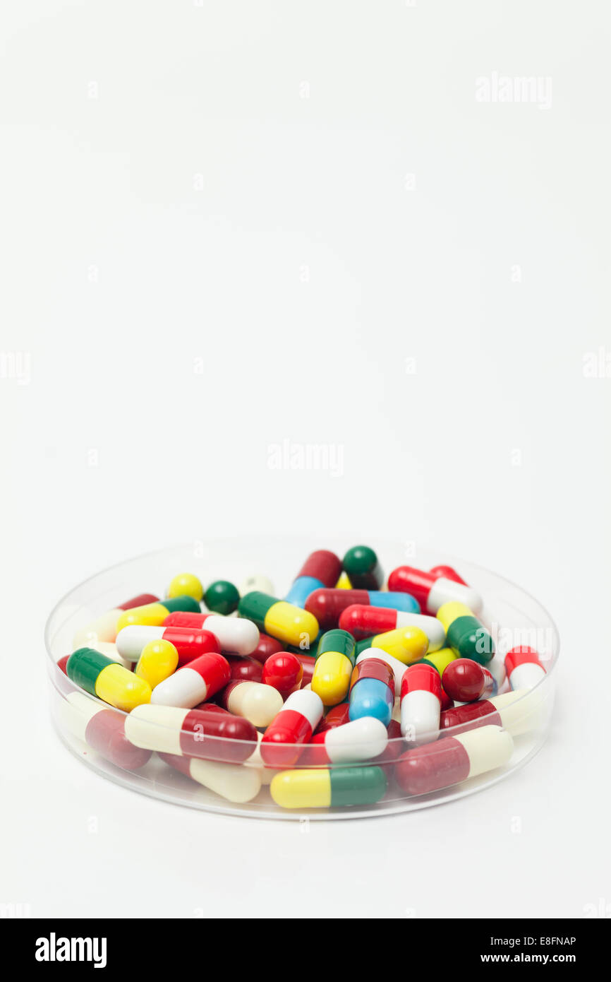 Petri dish full of pills - Stock Image
