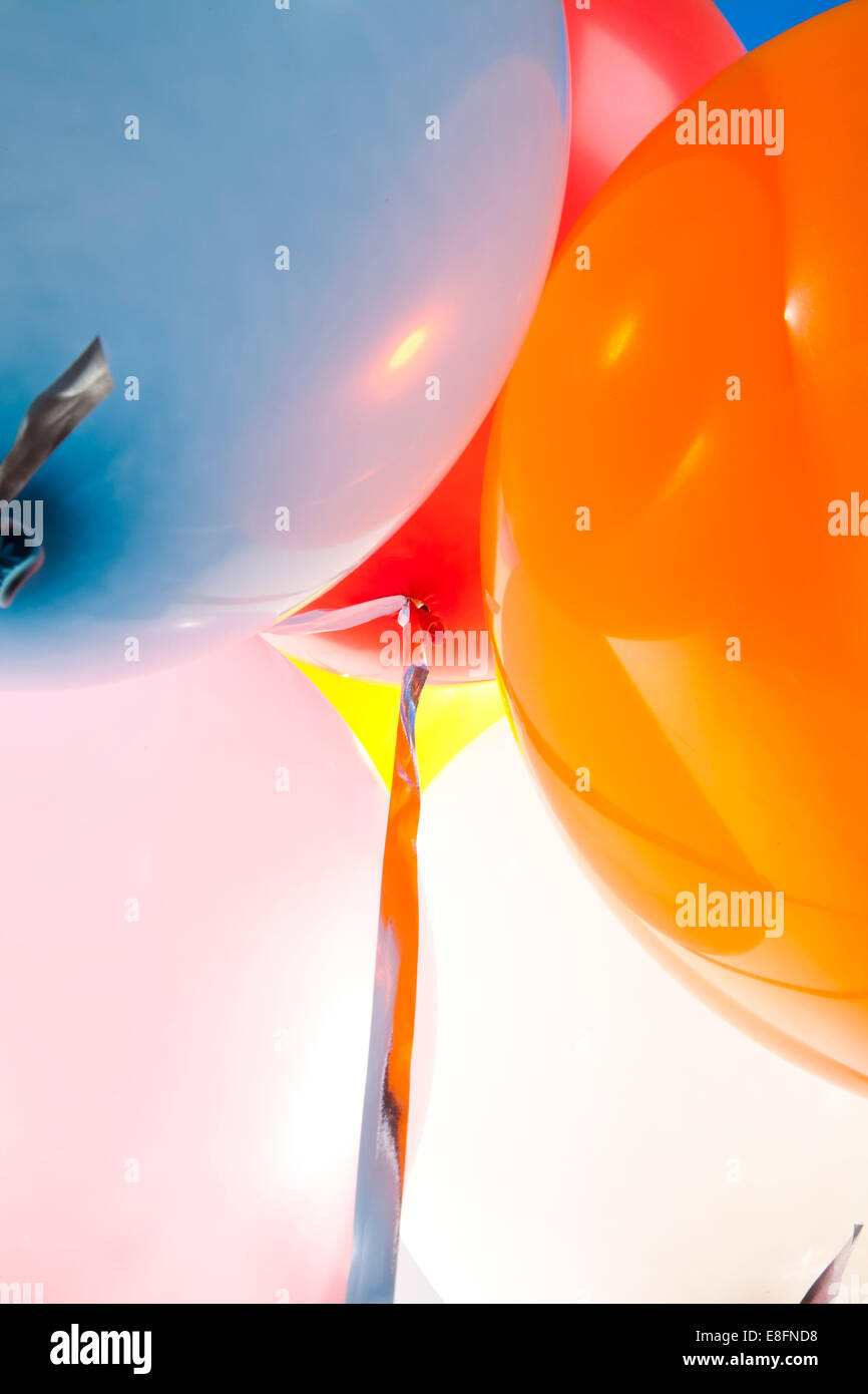 Close-up of multi colored helium balloons - Stock Image