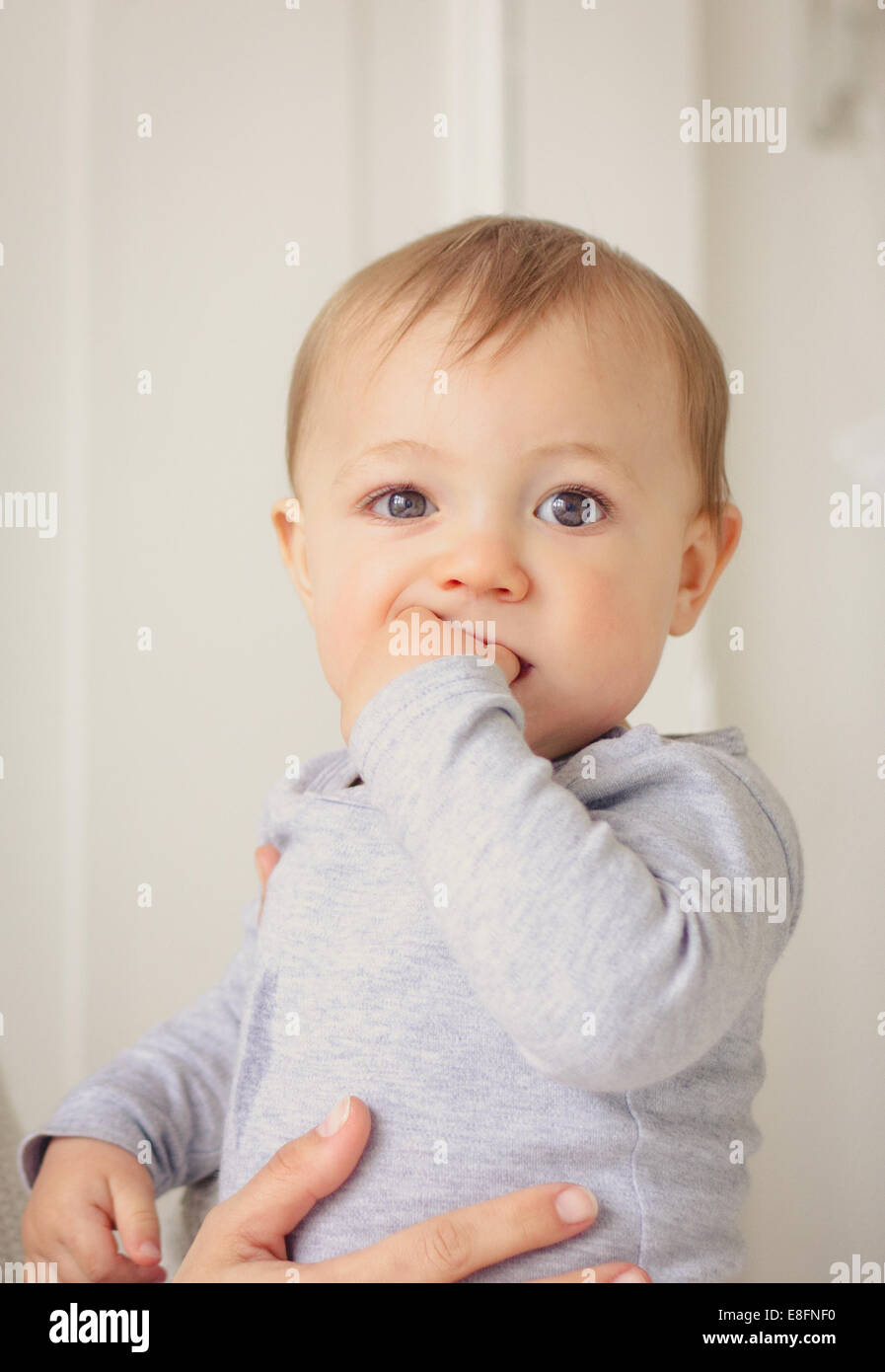 Netherlands, Portrait of baby boy - Stock Image