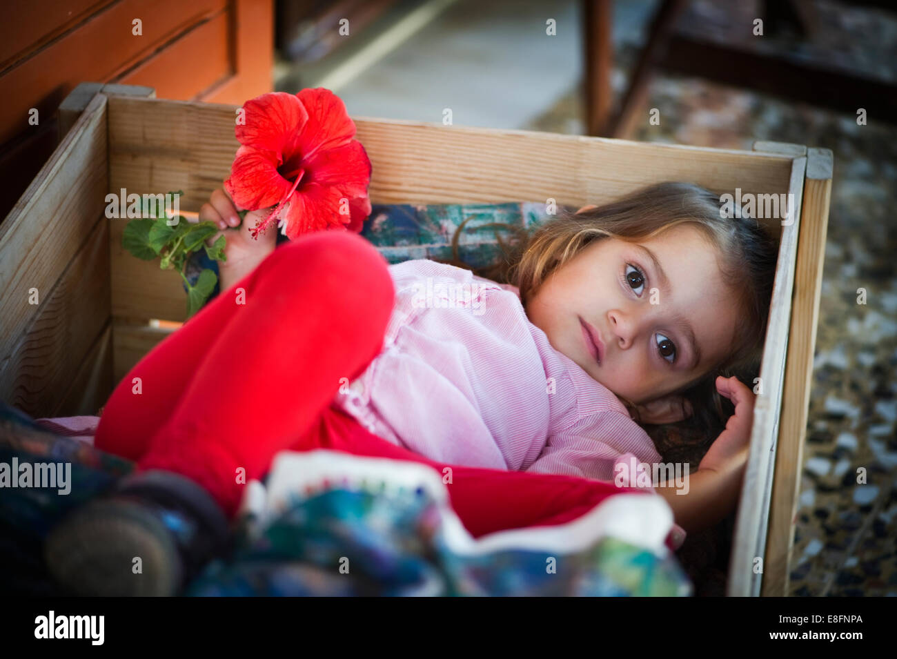 Greece, Ionian Islands Periphery, Kefalonia and Ithaca Prefecture, Girl (4-5) hiding in box - Stock Image