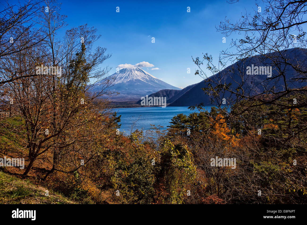 Japan, Yamanashi Prefecture, View of Mt Fuji - Stock Image