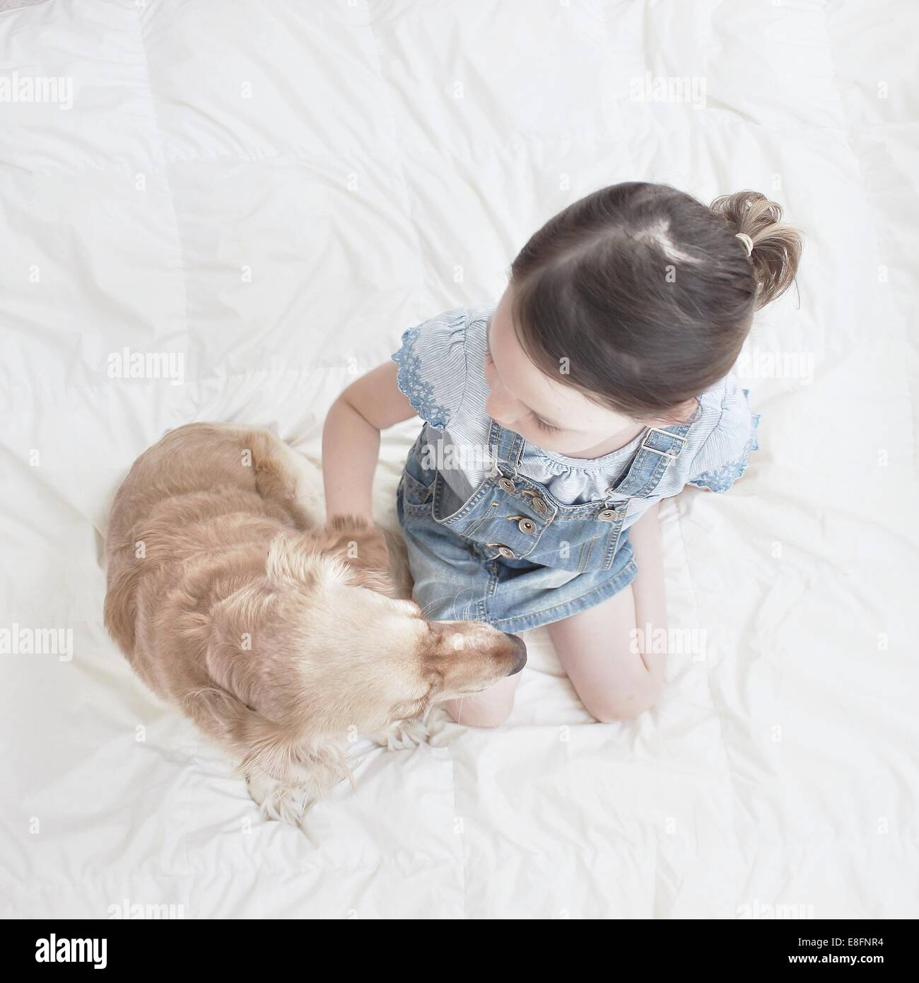 Overhead view of girl sitting on bed with dog - Stock Image