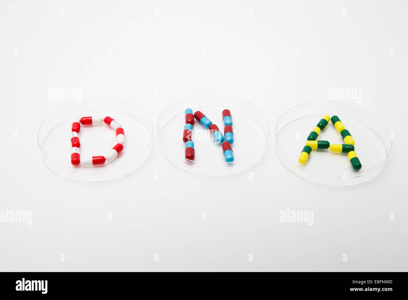 Word DNA made up of pills in petri dishes - Stock Image