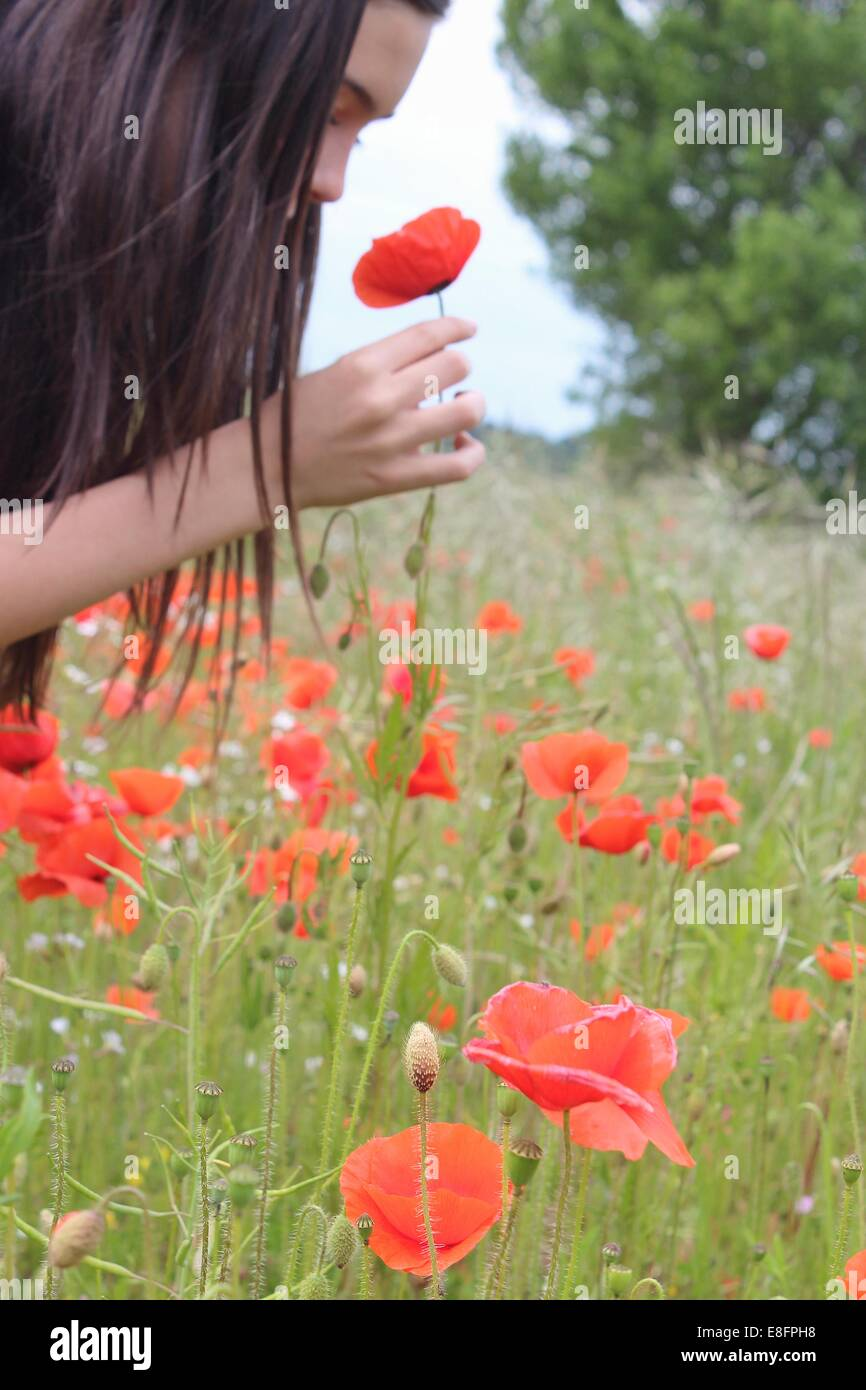 Girl picking and smelling pop flower - Stock Image