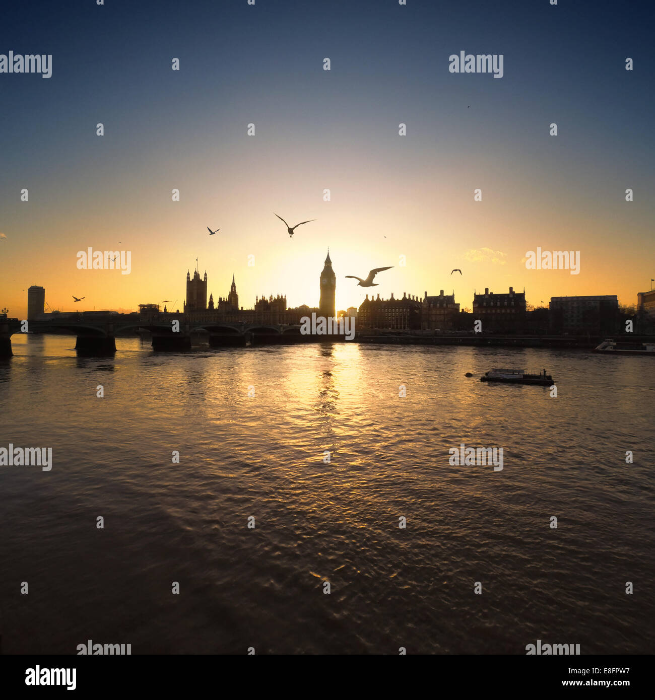 United Kingdom, London, Palace of Westminster at sunset - Stock Image