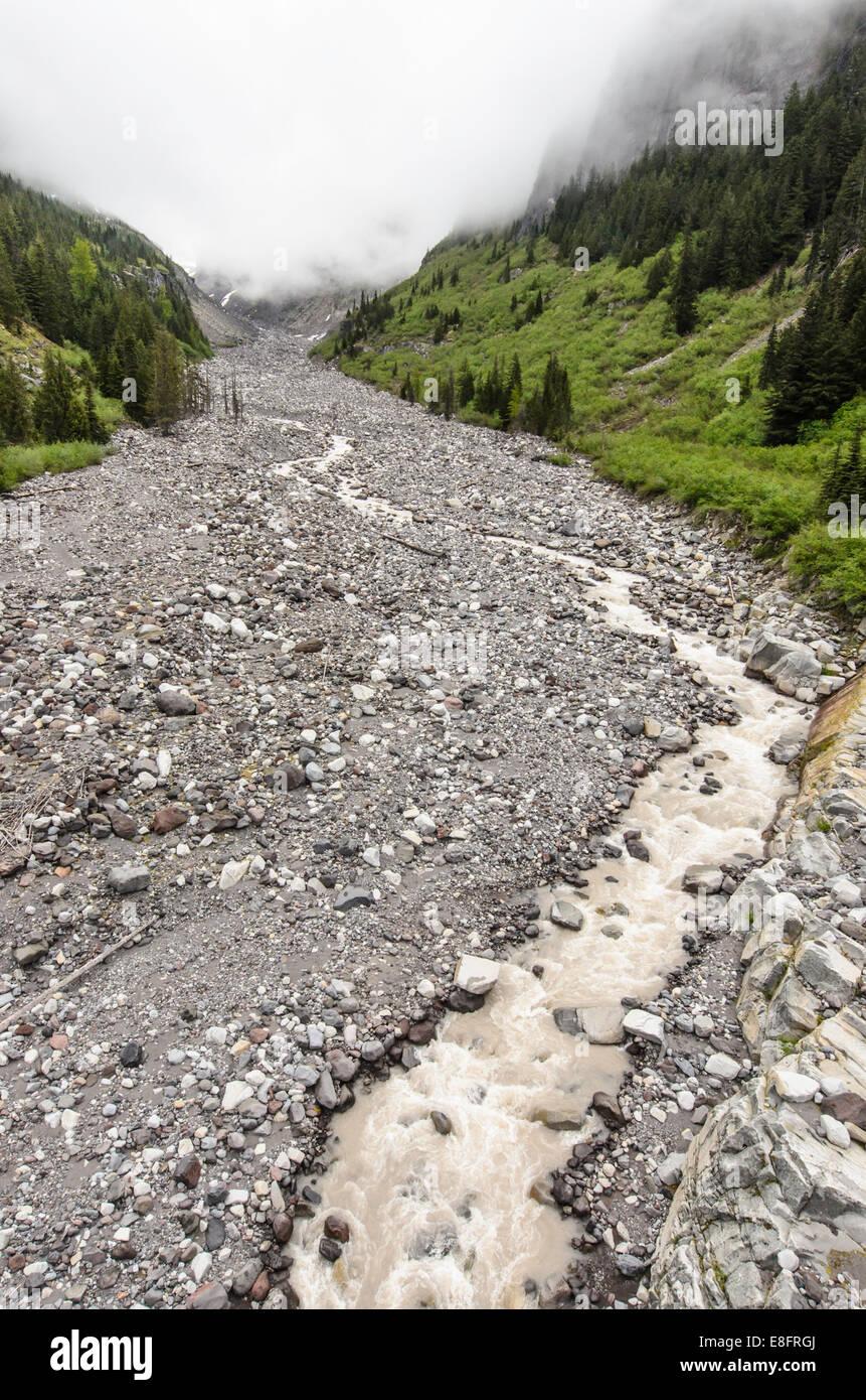 USA, Washington State, Mount Rainier National Park valley, Nisqually River view - Stock Image