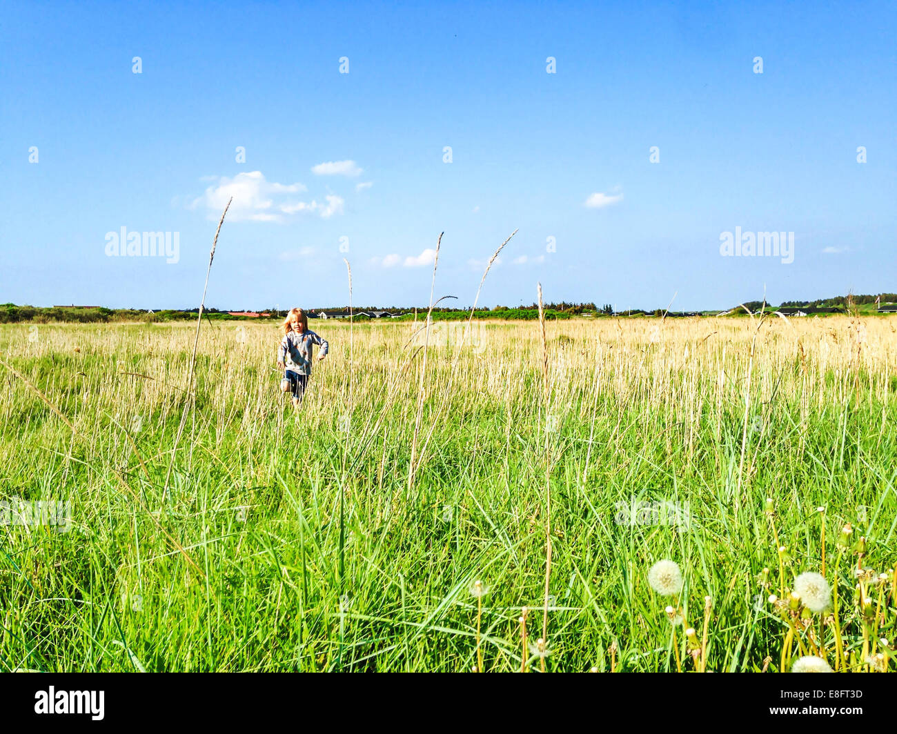 Boy running through field, Denmark - Stock Image