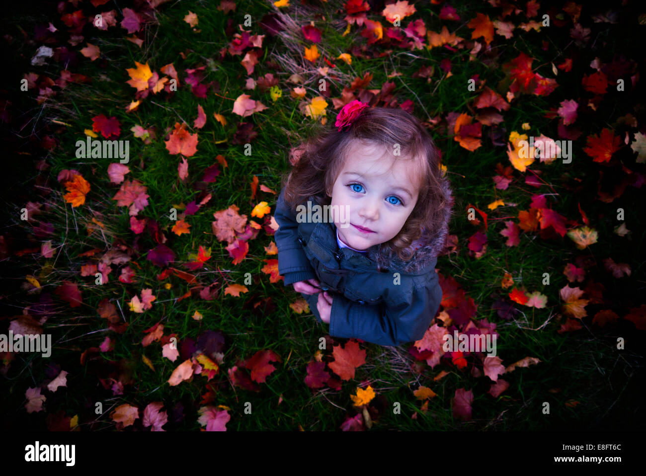 Girl (4-5) standing on autumn leaves Stock Photo
