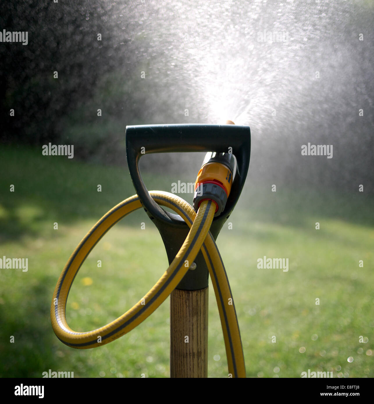 View of hosepipe to watering garden. - Stock Image