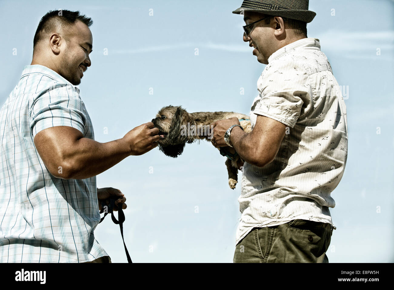 USA, Illinois, Cook County, Chicago, Men playing with dog - Stock Image