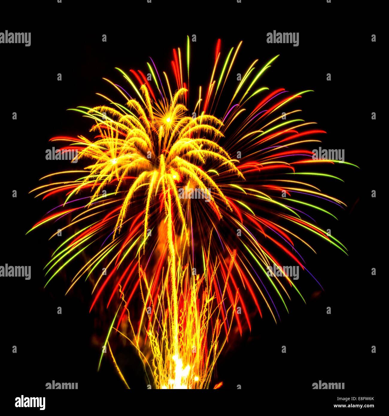 Firework display - Stock Image