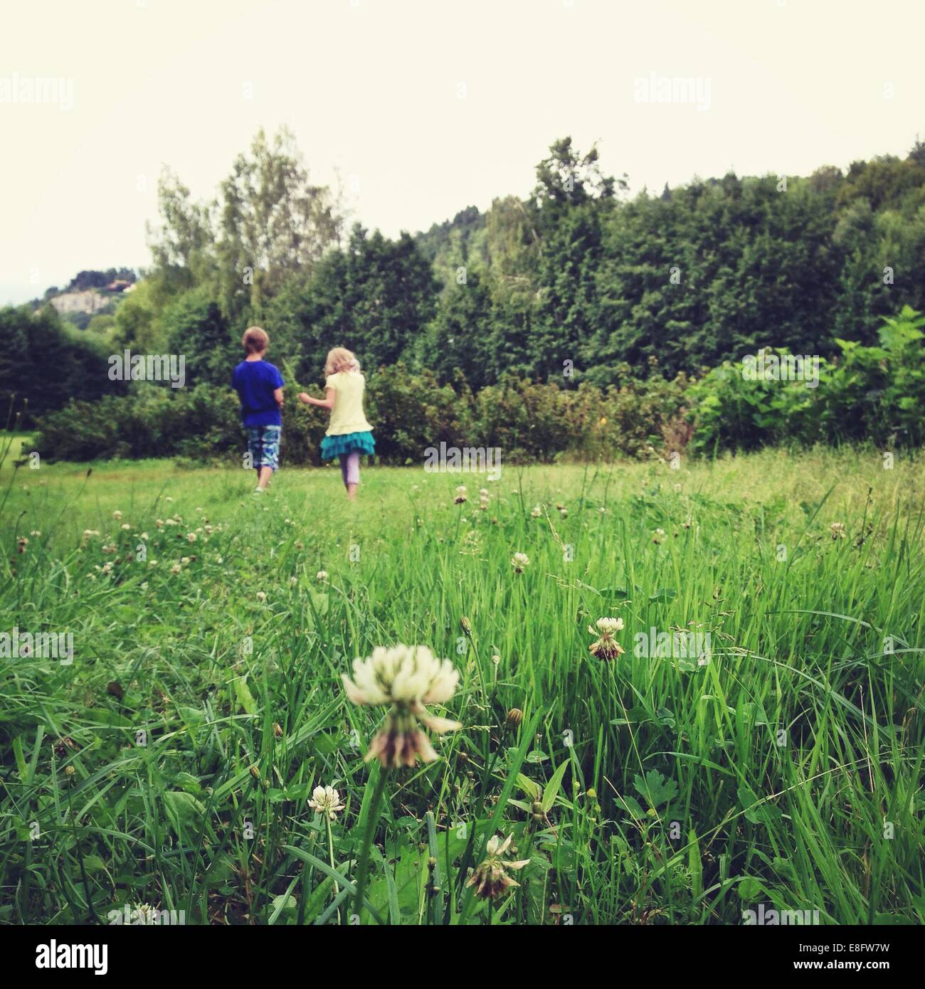 Boy and girl (10-11, 12-13) walking on meadow - Stock Image