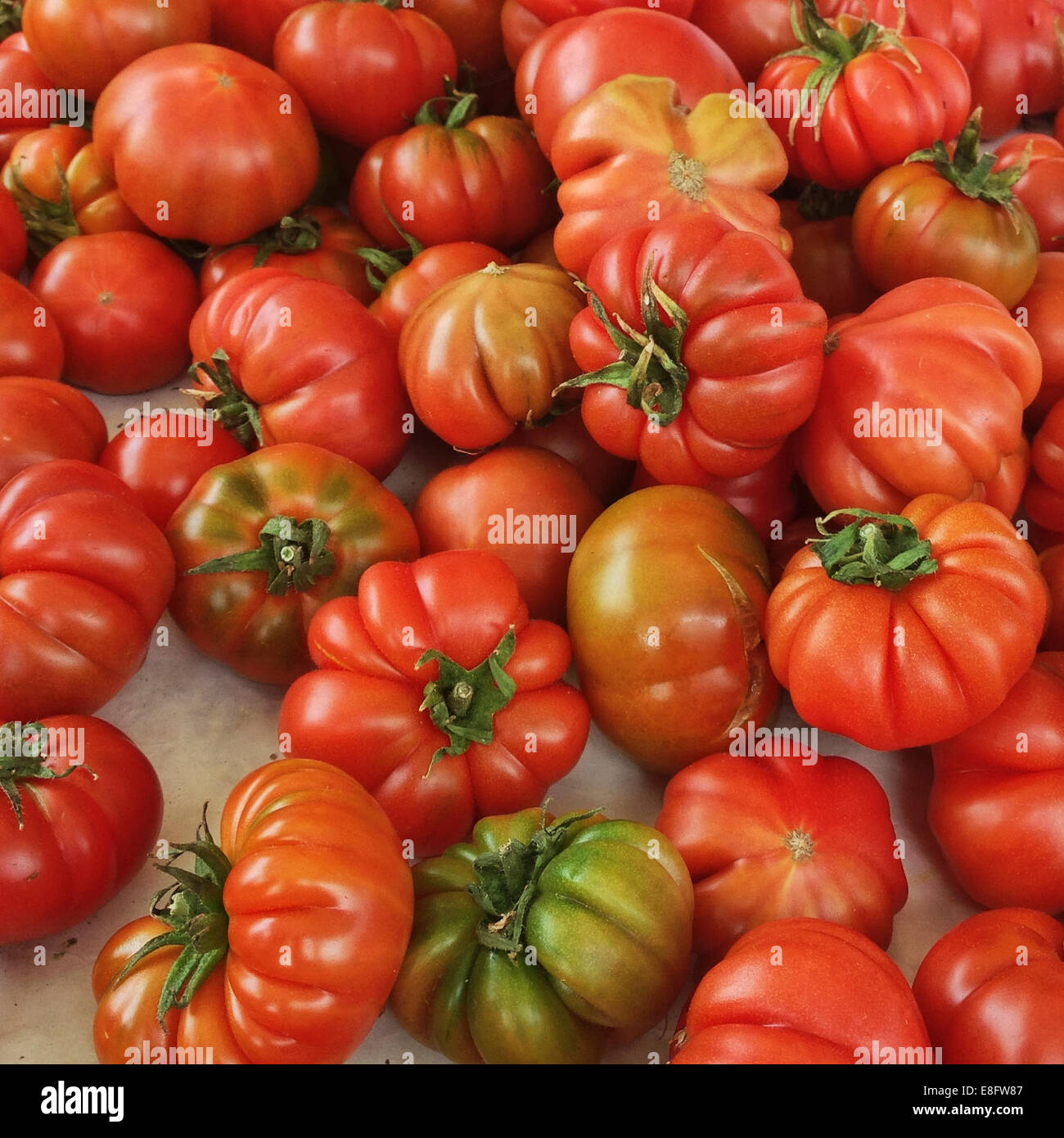 Italy, Tuscany, Tomatoes on market - Stock Image