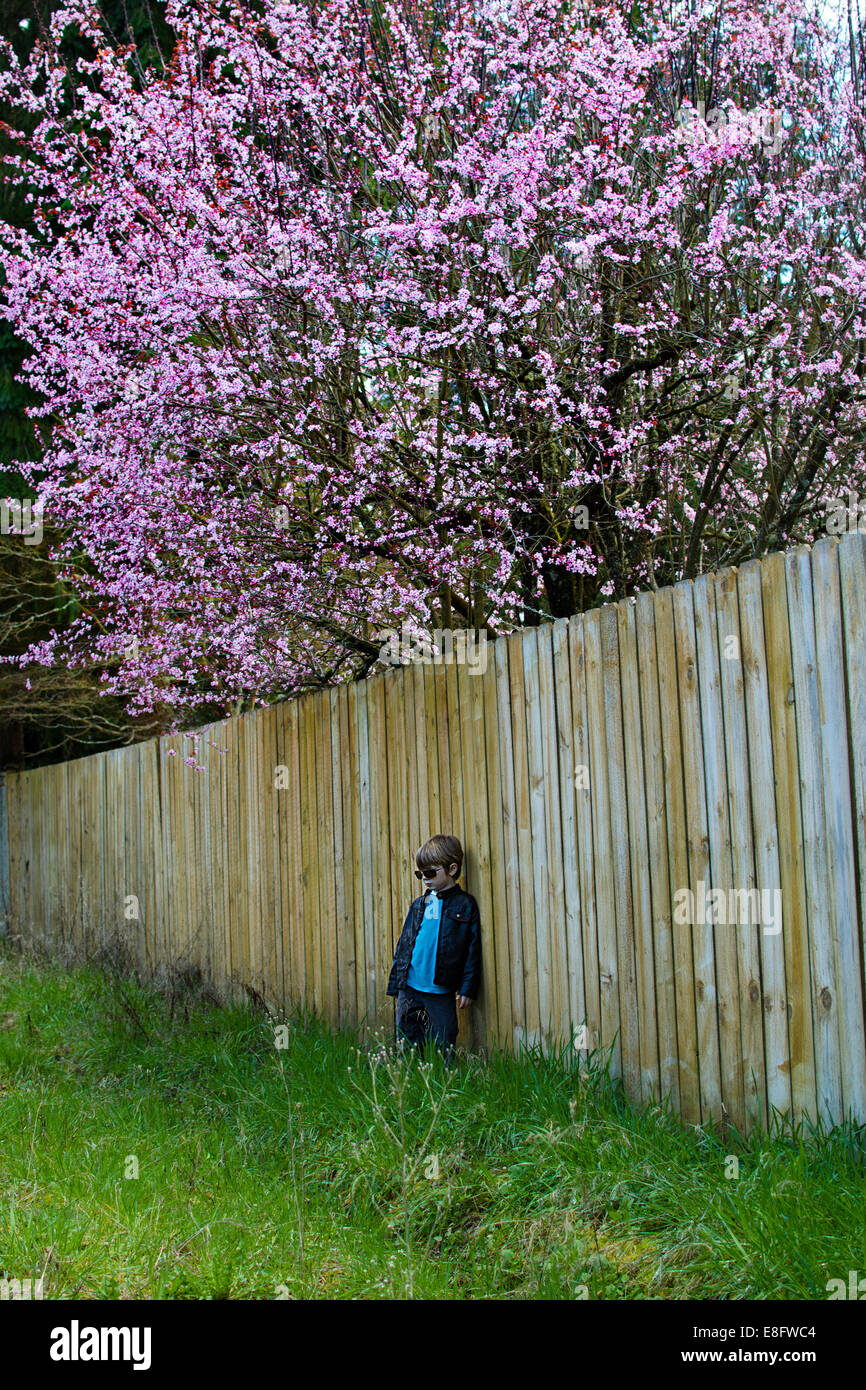 Boy (4-5) leaning on fence in garden - Stock Image