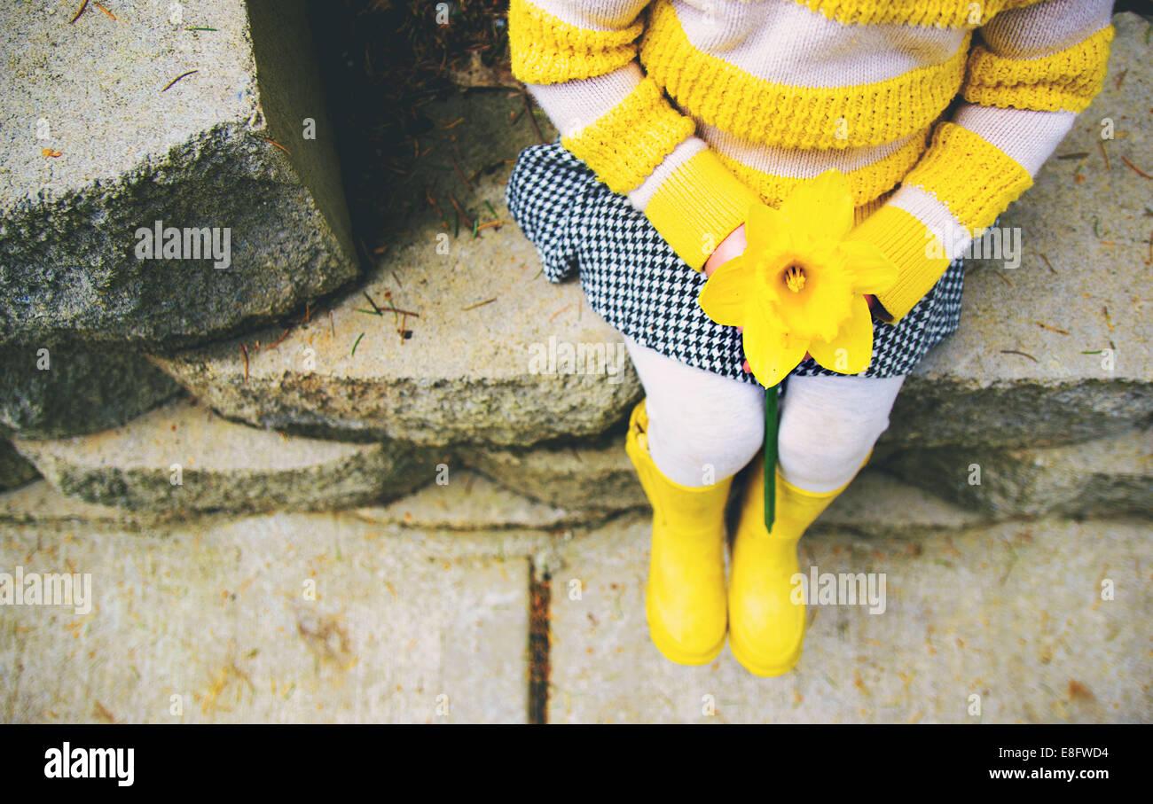 Girl holding daffodil (2-3 years) Stock Photo