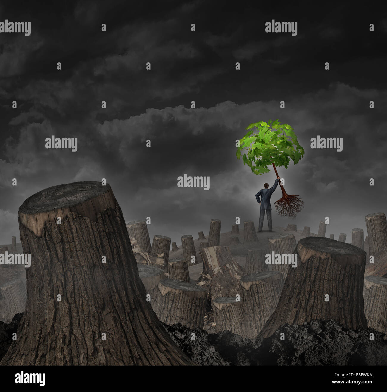 Disaster plan concept as a person standing on a hill in a dead forest with cut trees holding up a healthy young - Stock Image