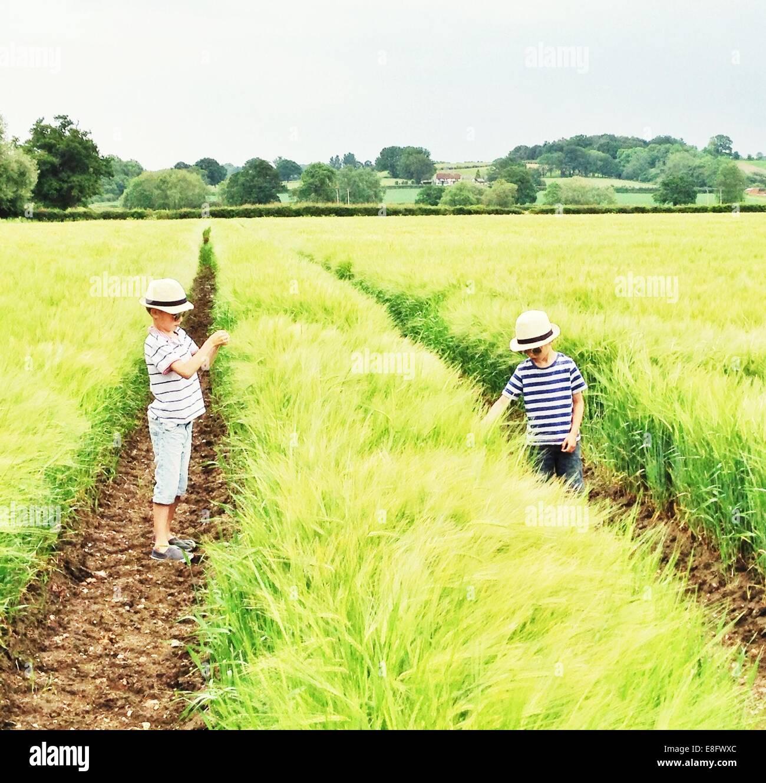 Boys (6-7) in field - Stock Image