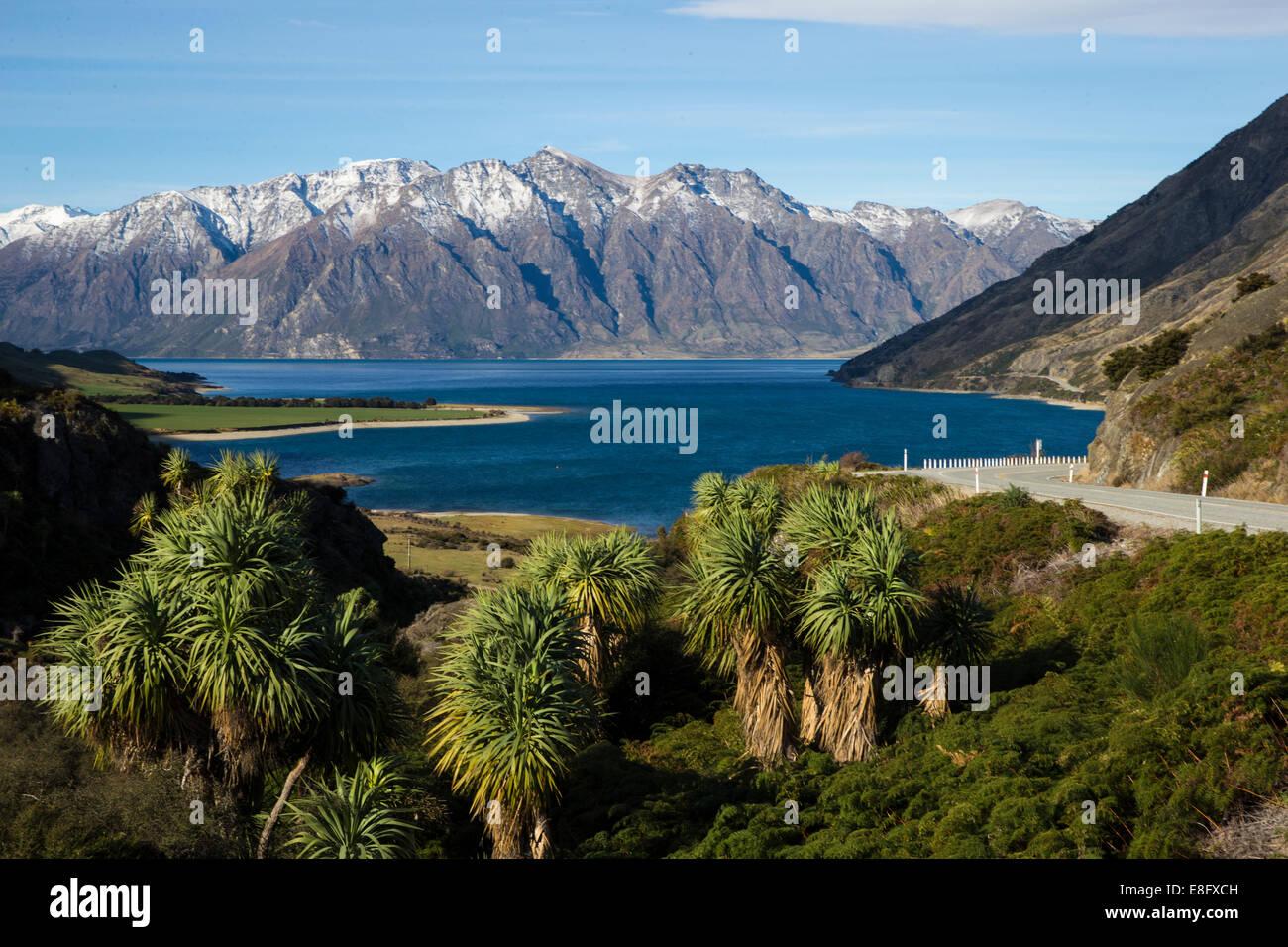 New Zealand, South Island, Landscape - Stock Image