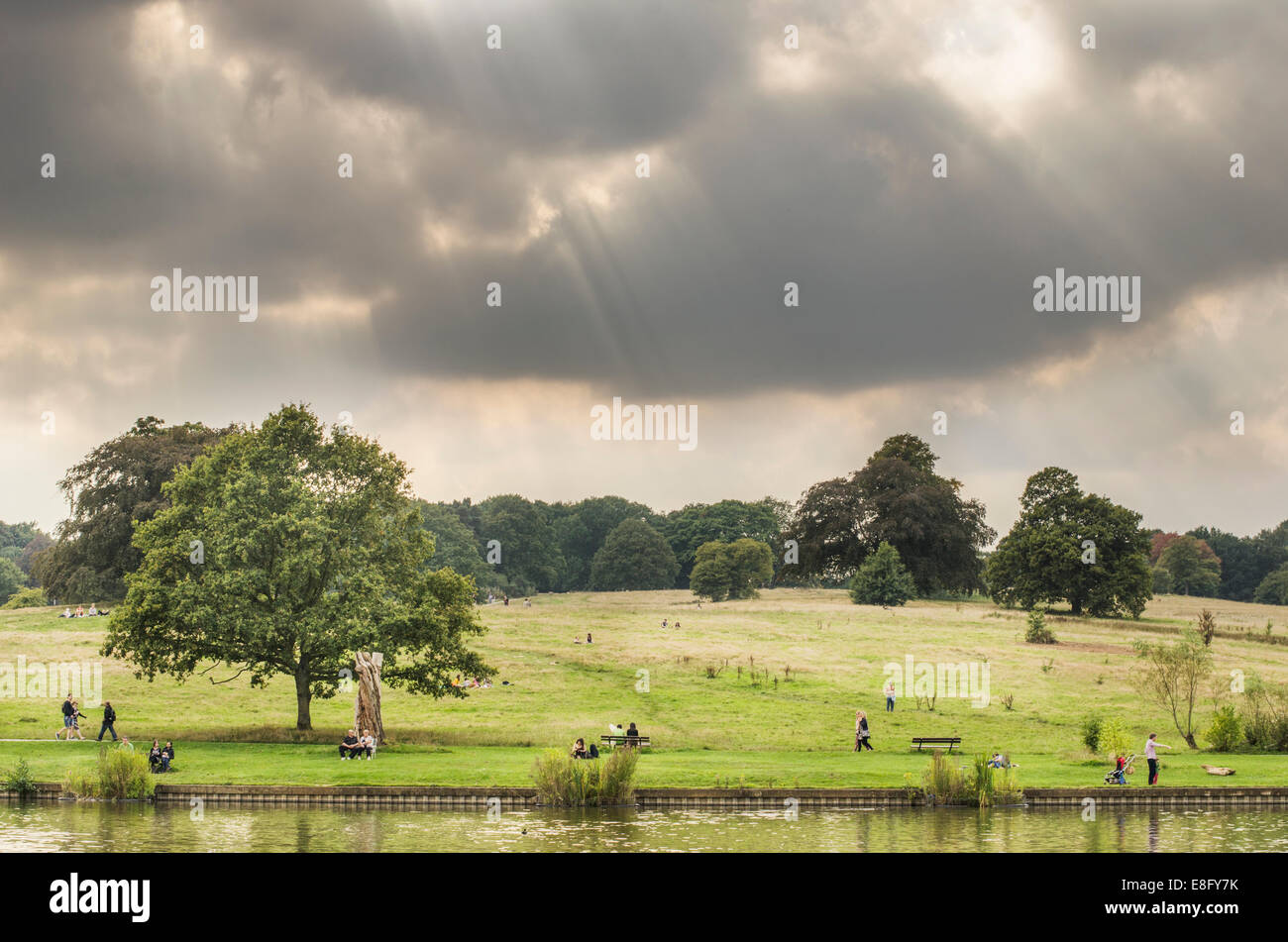 Cloudy day at Hampstead Heath, North London park. - Stock Image