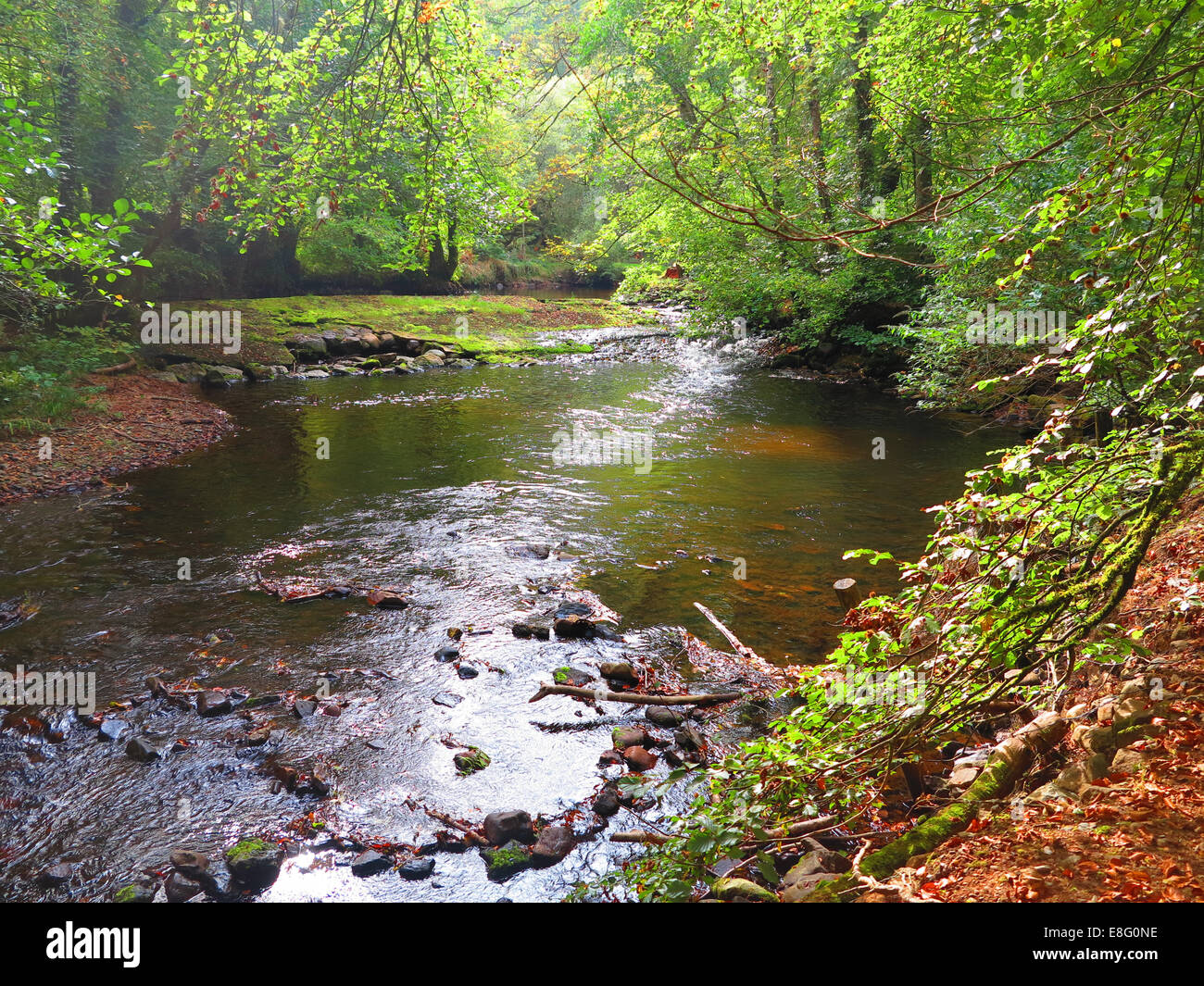 river bovey - Stock Image