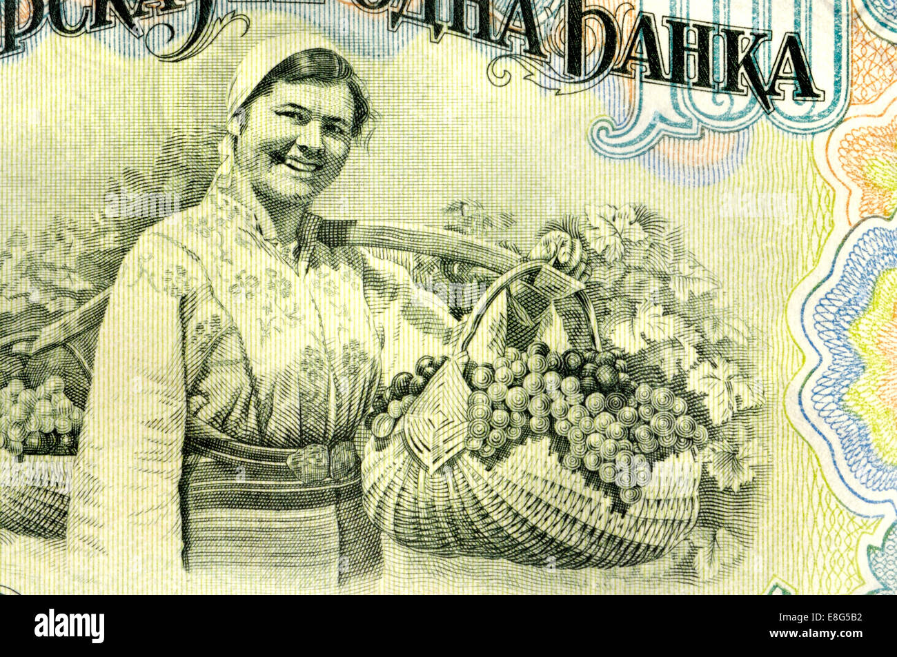 Detail from a 1950s Bulgarian 100 Lev banknote showing a woman with a basket full of grapes - Stock Image