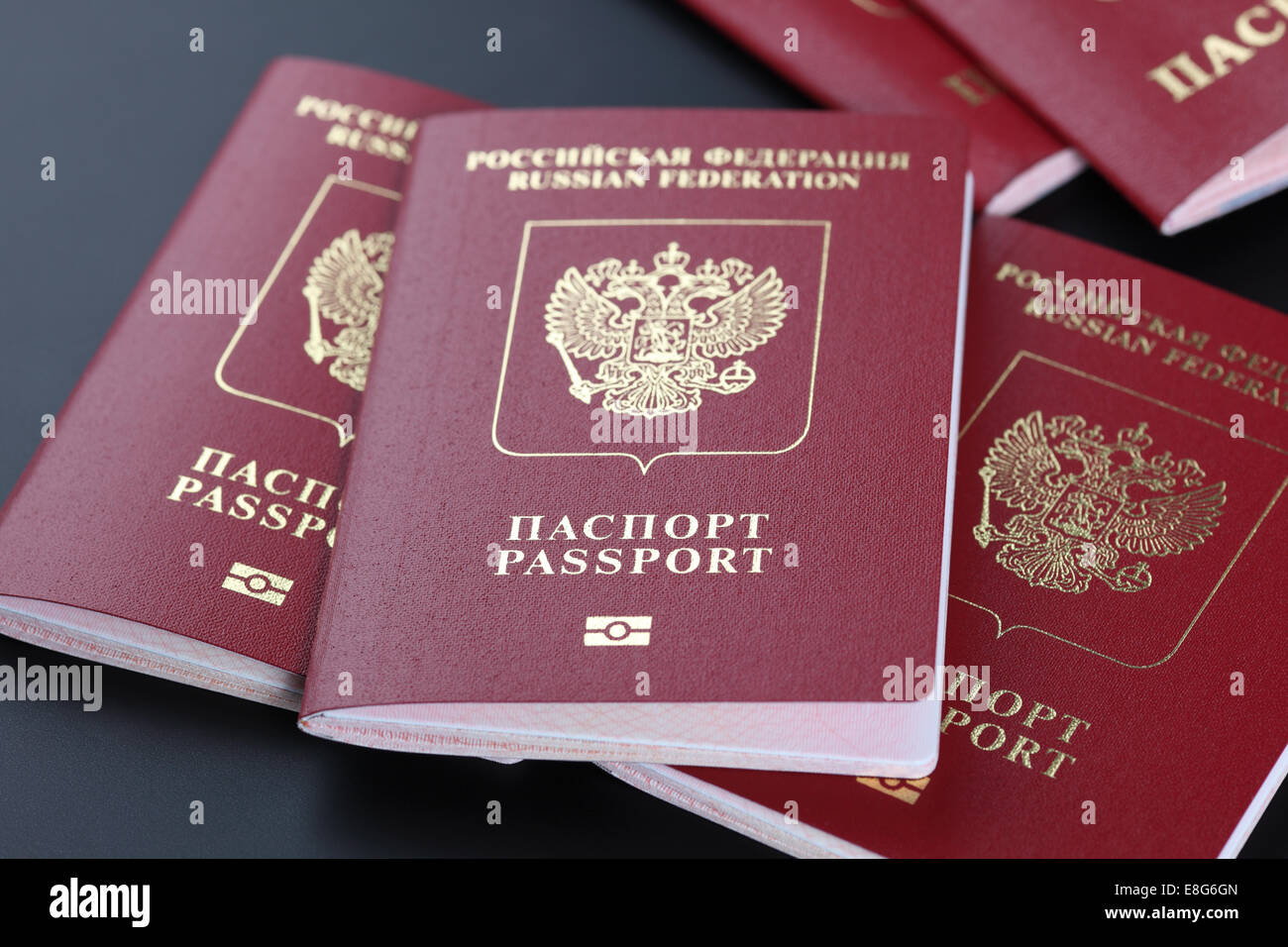 New Russian Federation passports with microchip. - Stock Image