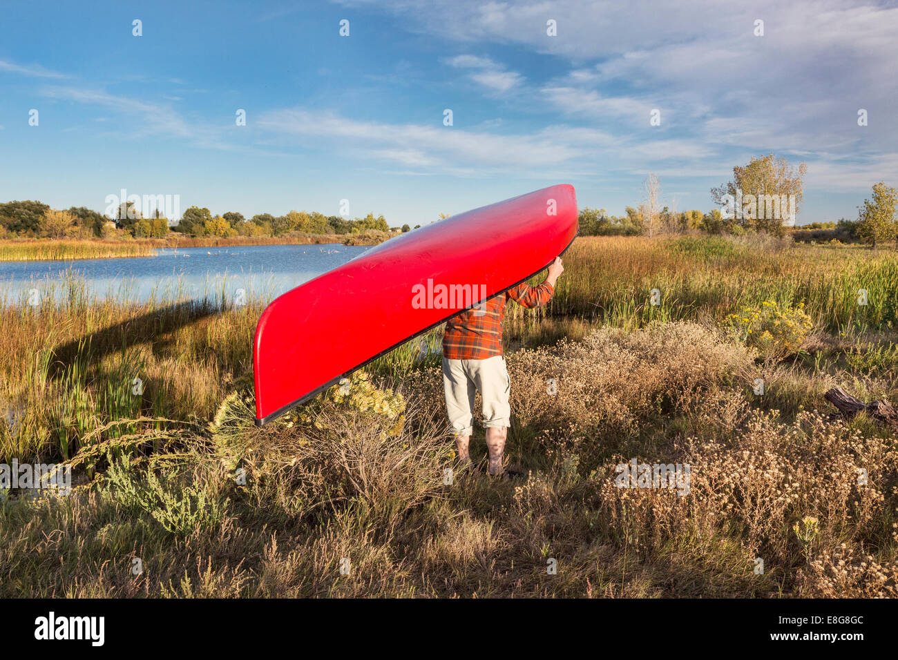 portaging canoe between lakes, Riverbend Ponds Natural Area, Fort Collins, Colorado - Stock Image