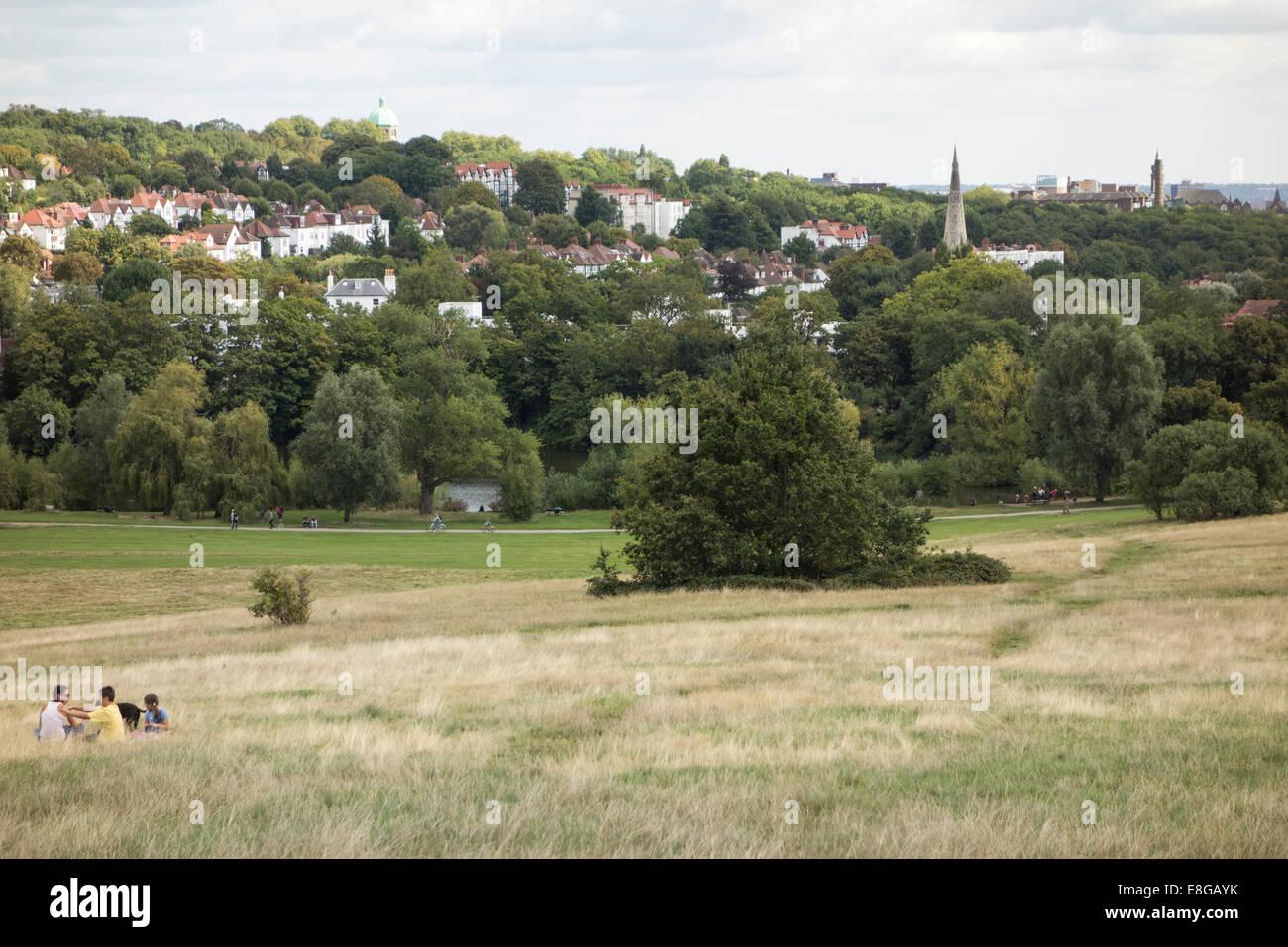 Hampstead Heath common park in North London near Highgate London England United Kingdom - Stock Image