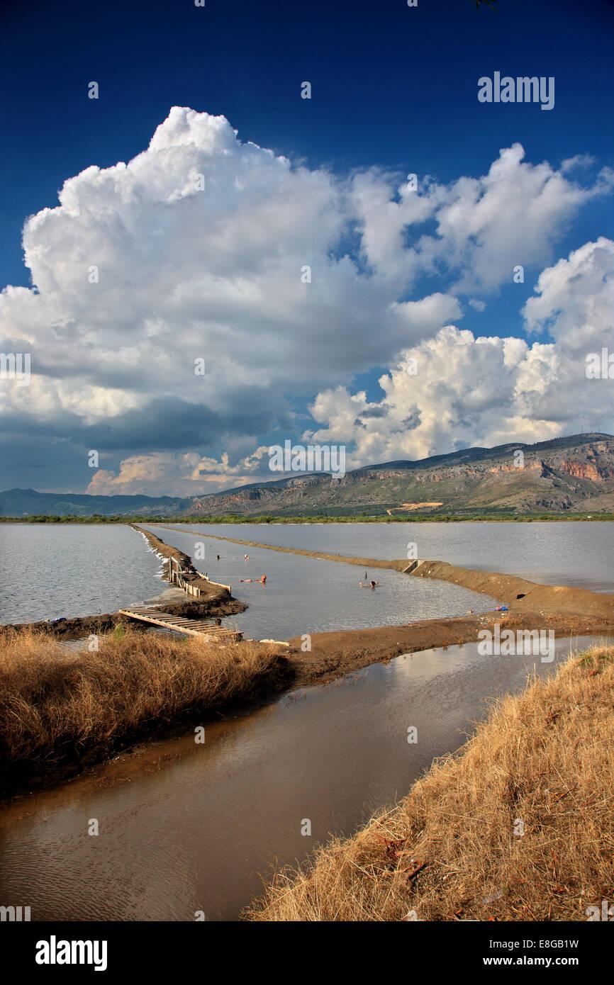 At the Canal of Foinikia (popular for healing mud baths), lagoon of Messolonghi-Aitoliko, Aitoloakarnania, Greece. - Stock Image
