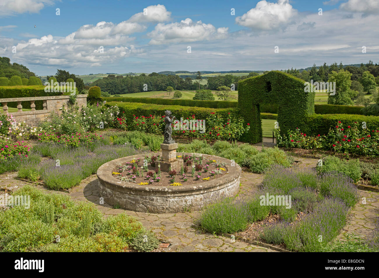 Formal garden with lavender, red roses, circular flower bed with statue, yew hedge, & stone paving at Hill of - Stock Image
