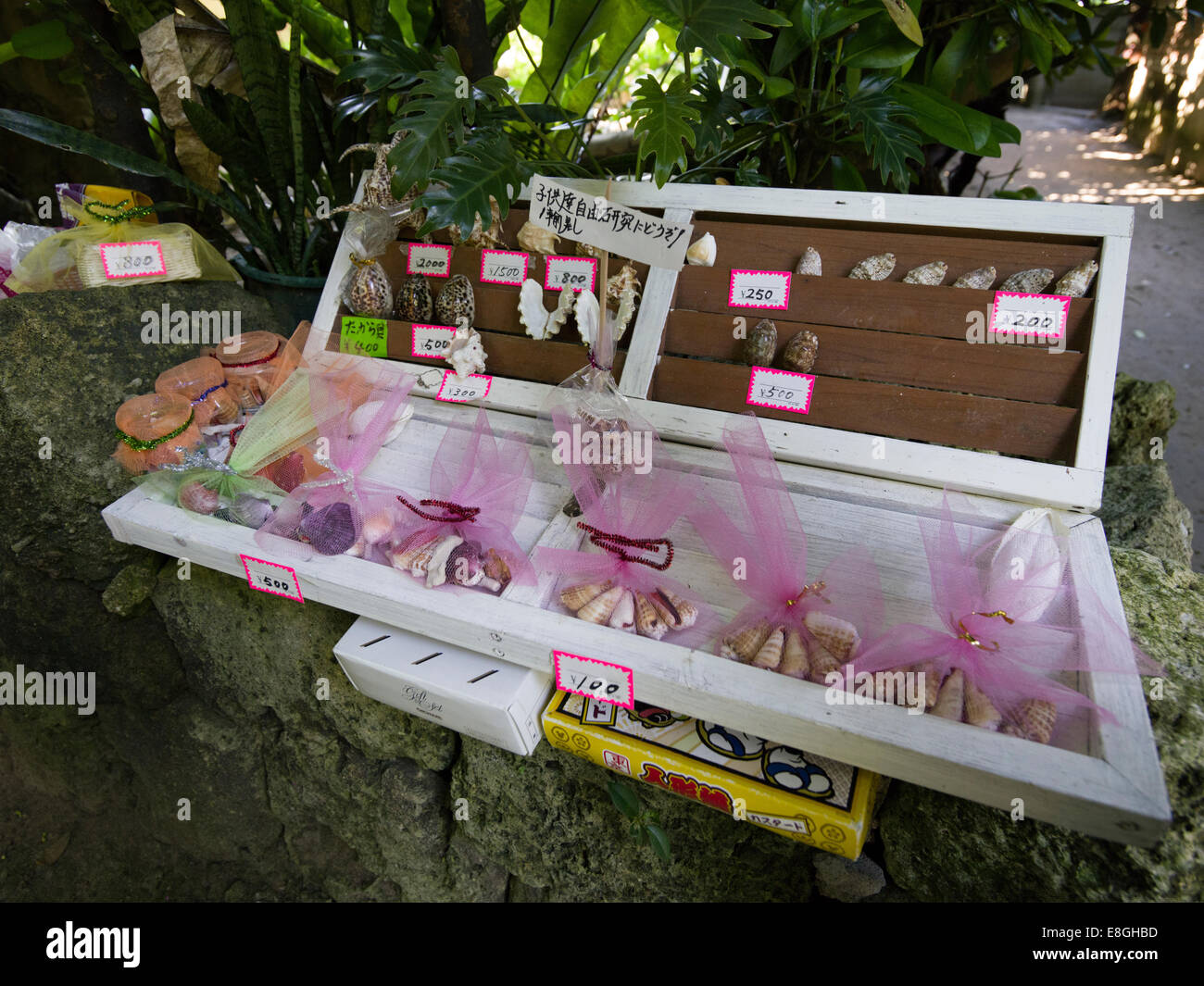 Shell Souvenirs for sale with honesty box - Bise Fukugi Tree Road, Motobu, Okinawa. Japan has one of the lowest - Stock Image