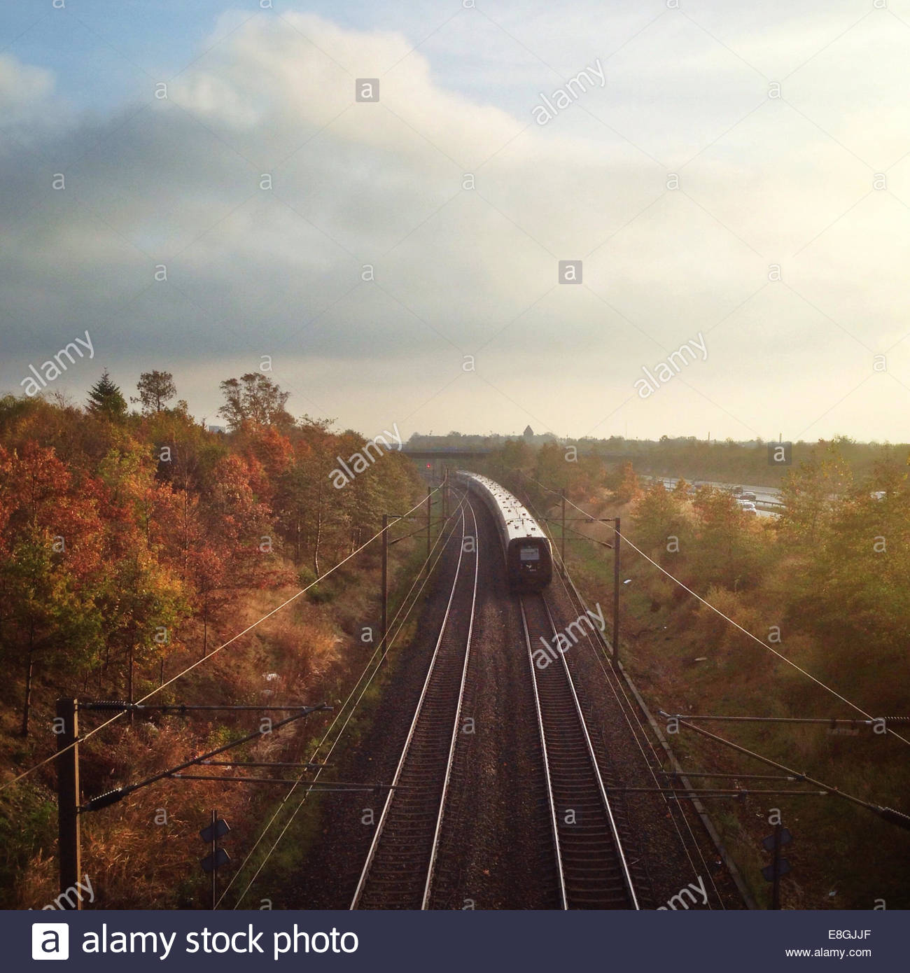 Elevated view of train travelling through autumn landscape - Stock Image