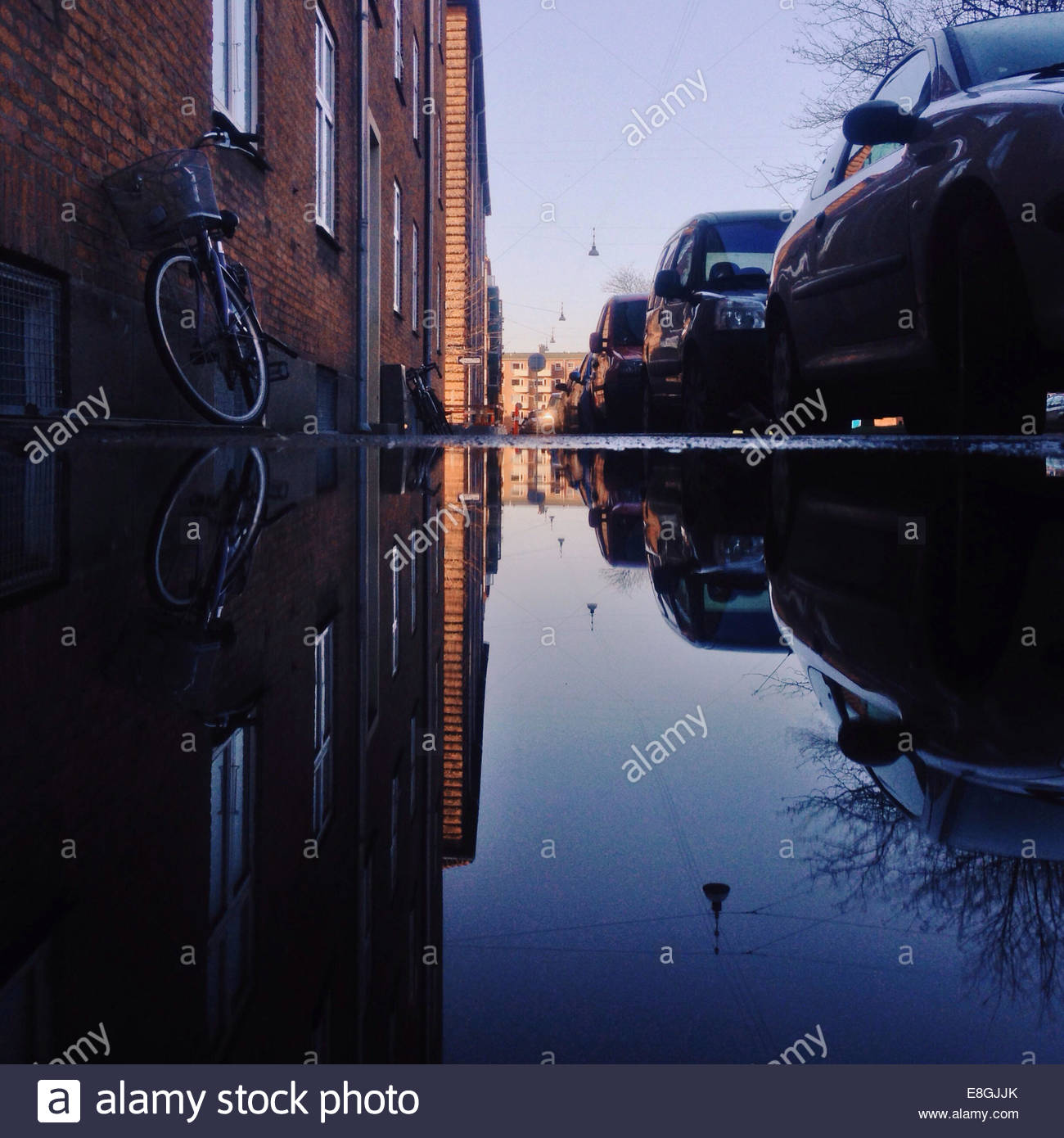 Parked cars reflected in puddle - Stock Image