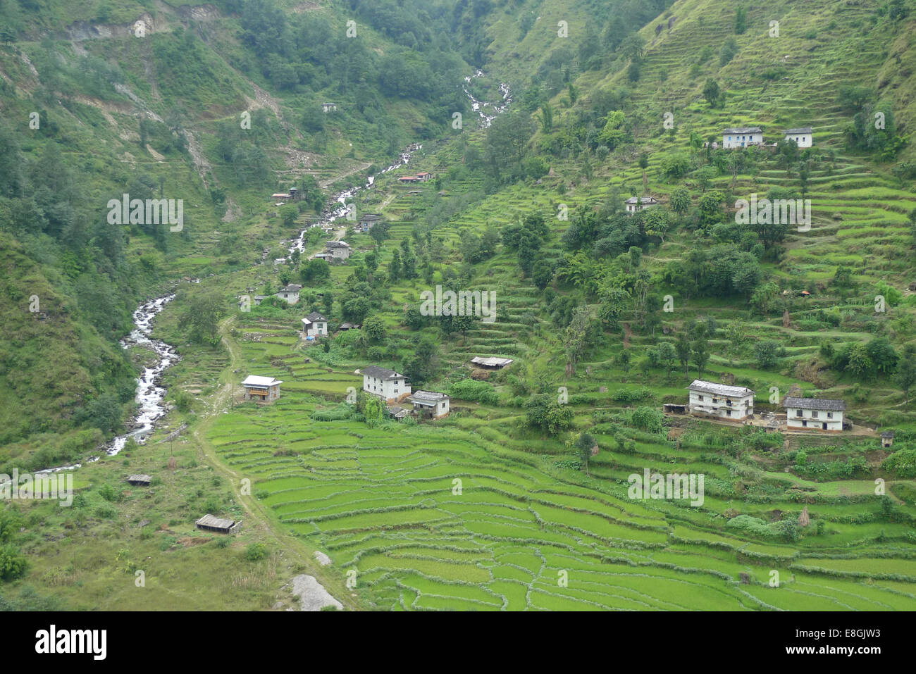 View of houses on hill and terraced fields - Stock Image