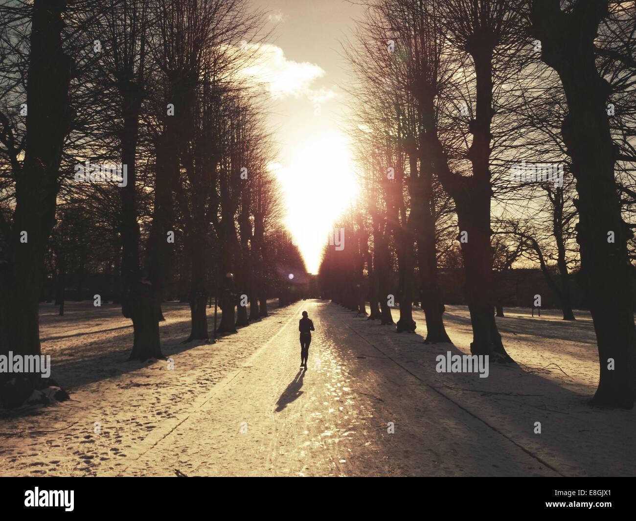 Silhouette of a Man running in Sondermarken, Frederiksberg, Copenhagen, Denmark - Stock Image