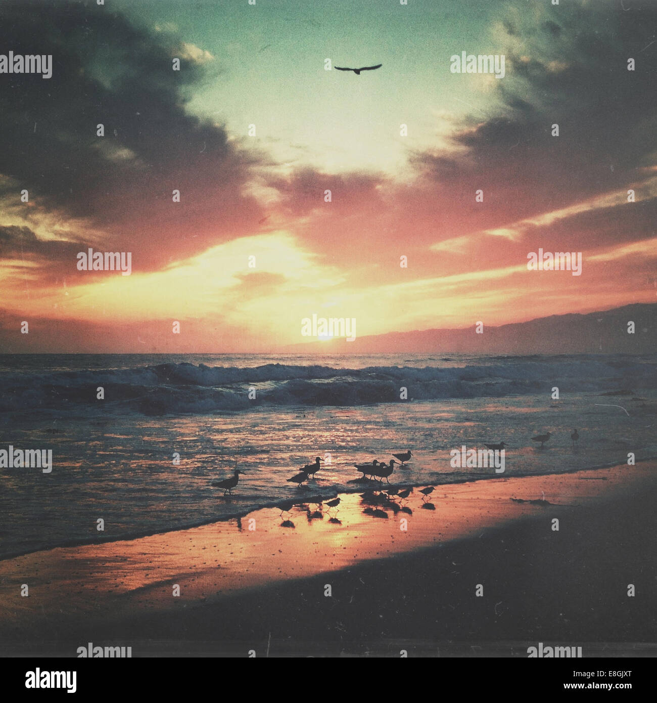 USA, California, Los Angeles County, Sunset over Santa Monica - Stock Image