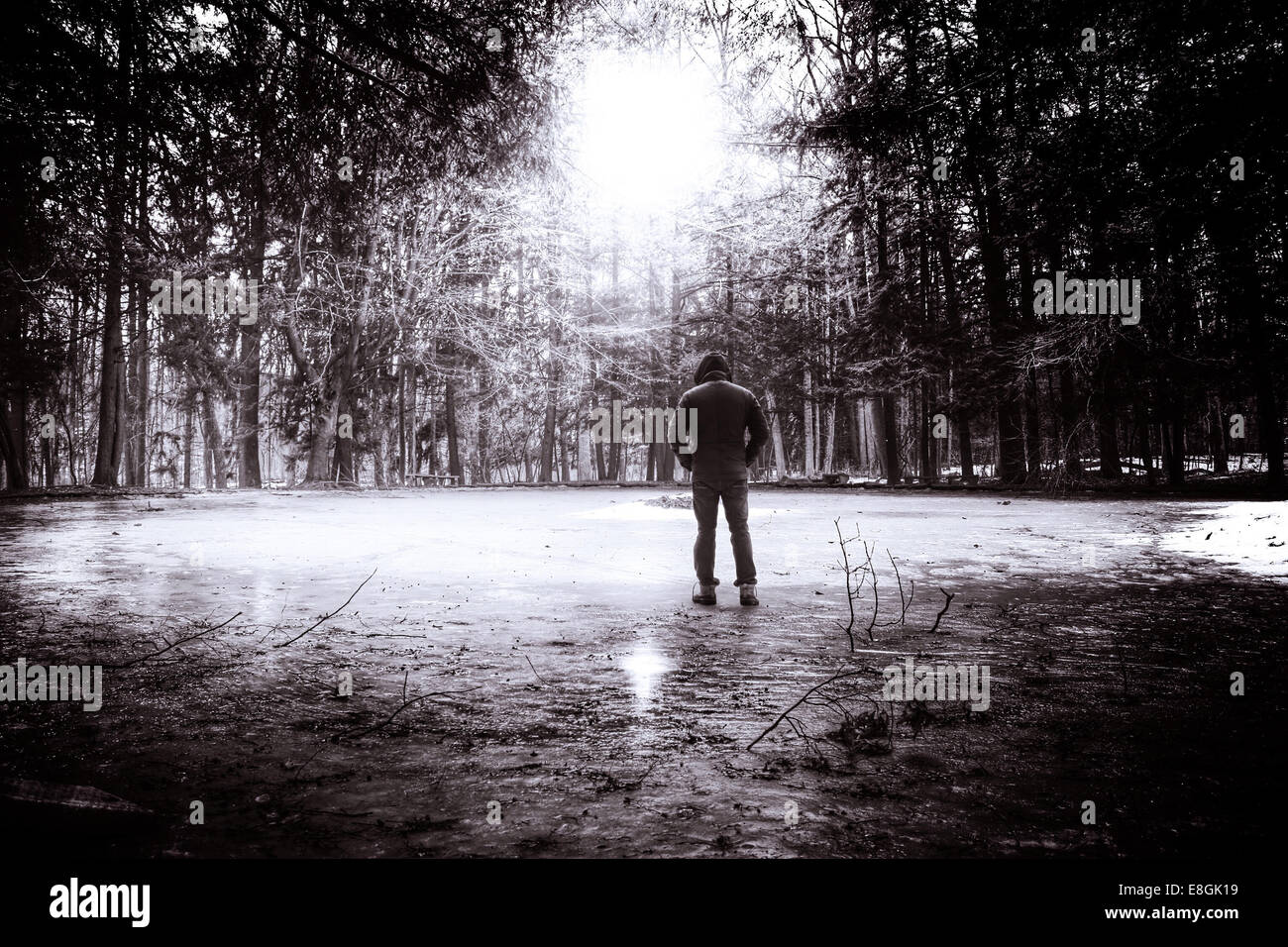 Young man in hooded shirt standing in park, Rear view Stock Photo