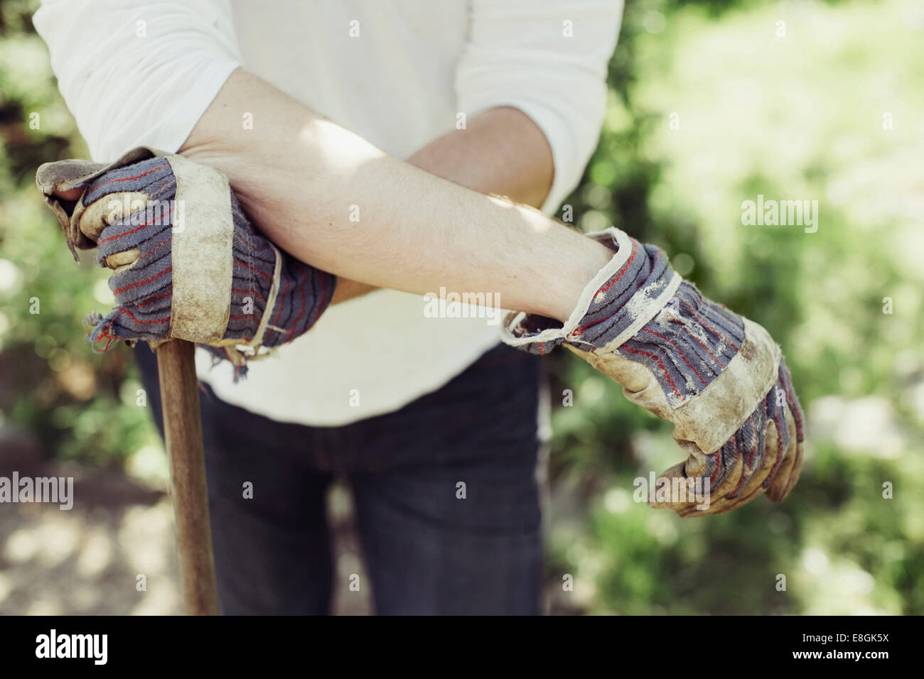 Midsection of man wearing gardening gloves at yard - Stock Image