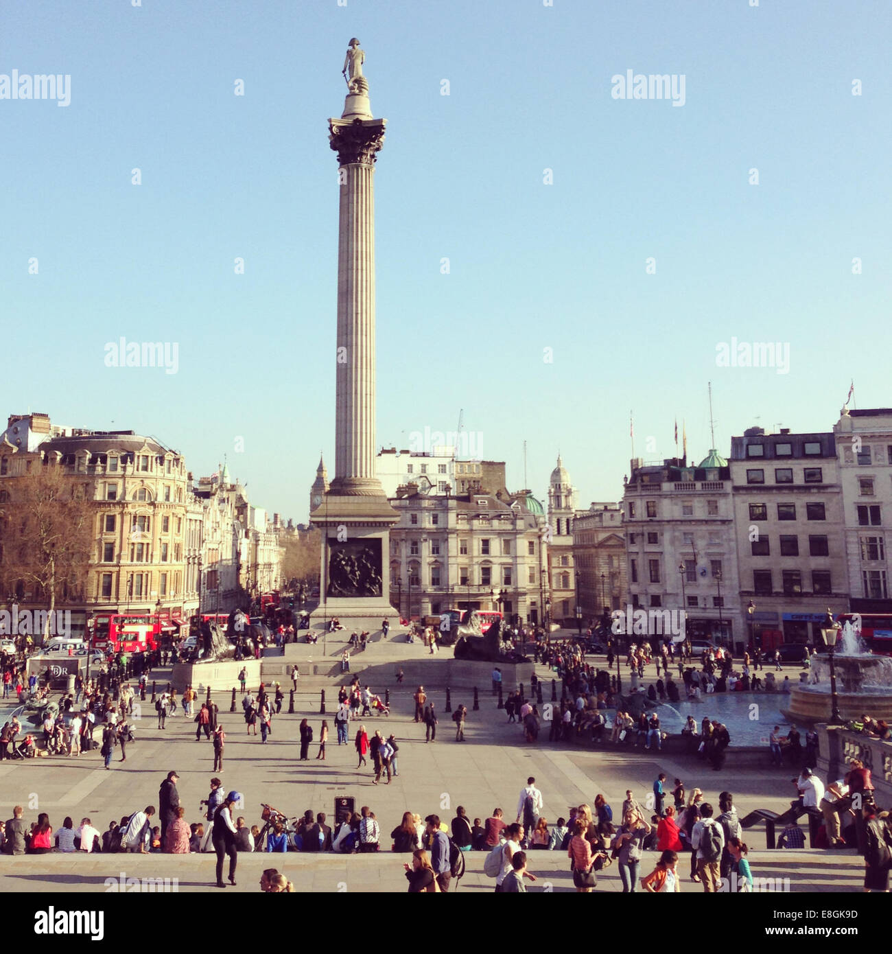 United Kingdom, London, Column on Trafalgar Square - Stock Image