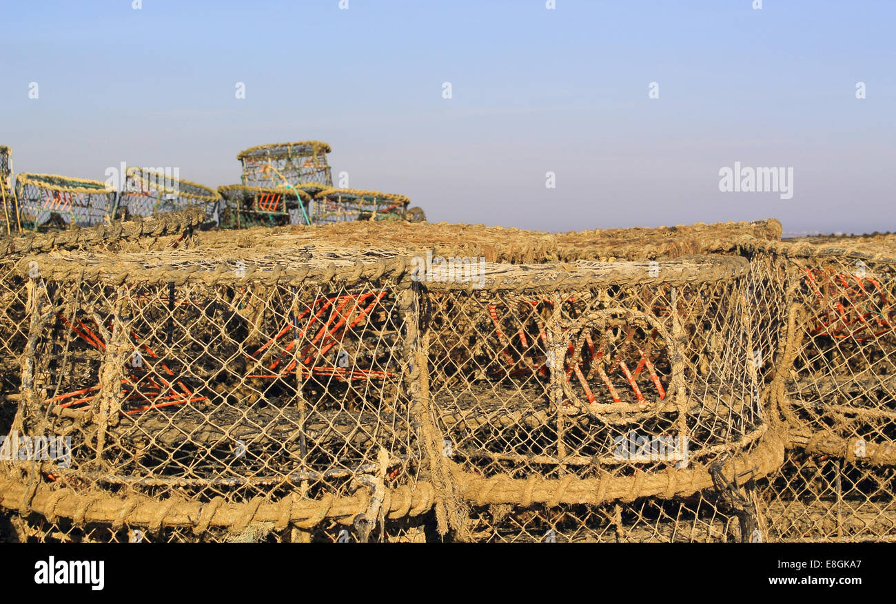 United Kingdom, England, Dorset, Crab and lobster pots - Stock Image