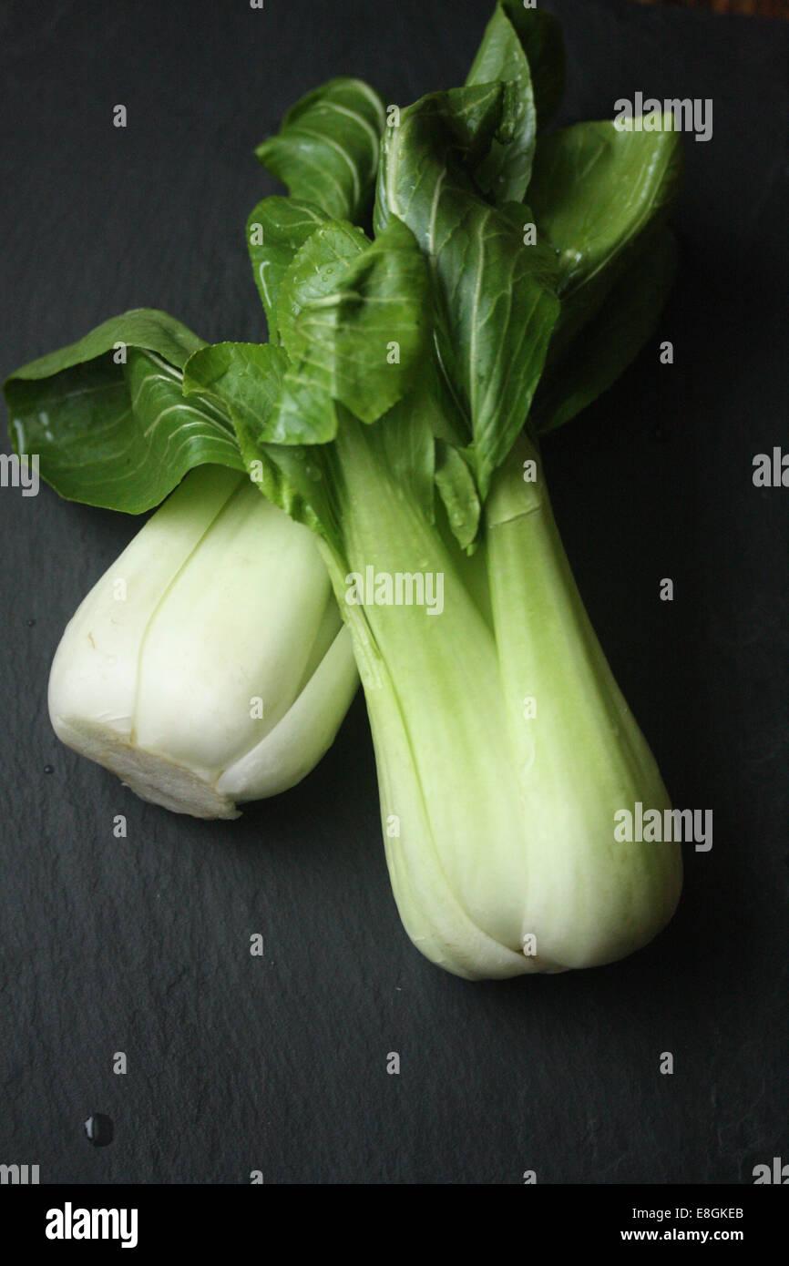 Close-up of Bok Choy - Stock Image