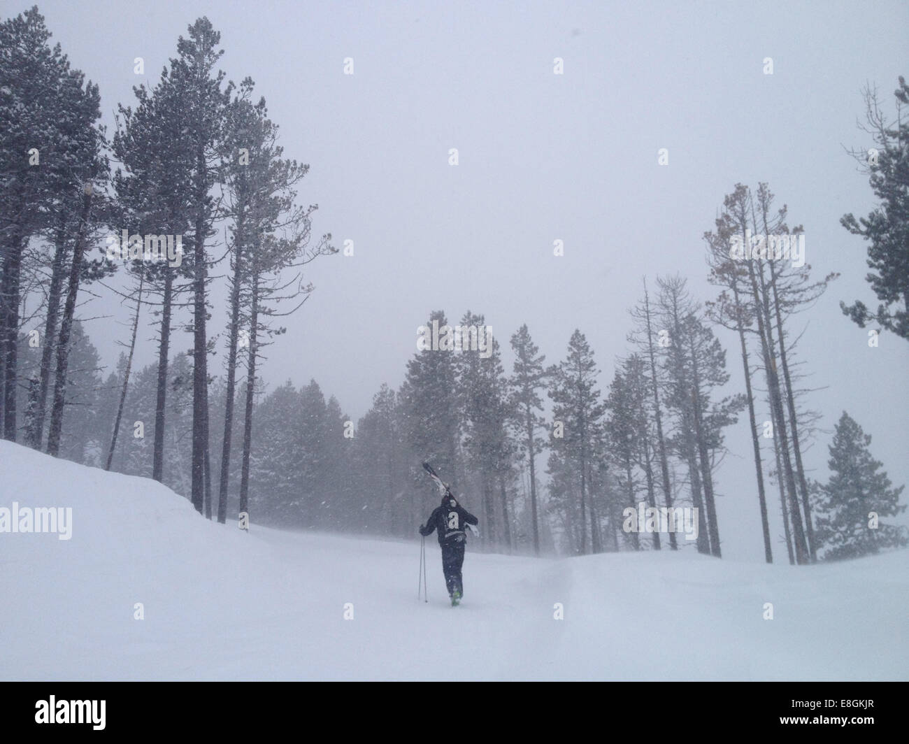 Rear view of man walking up hill, carrying skies - Stock Image