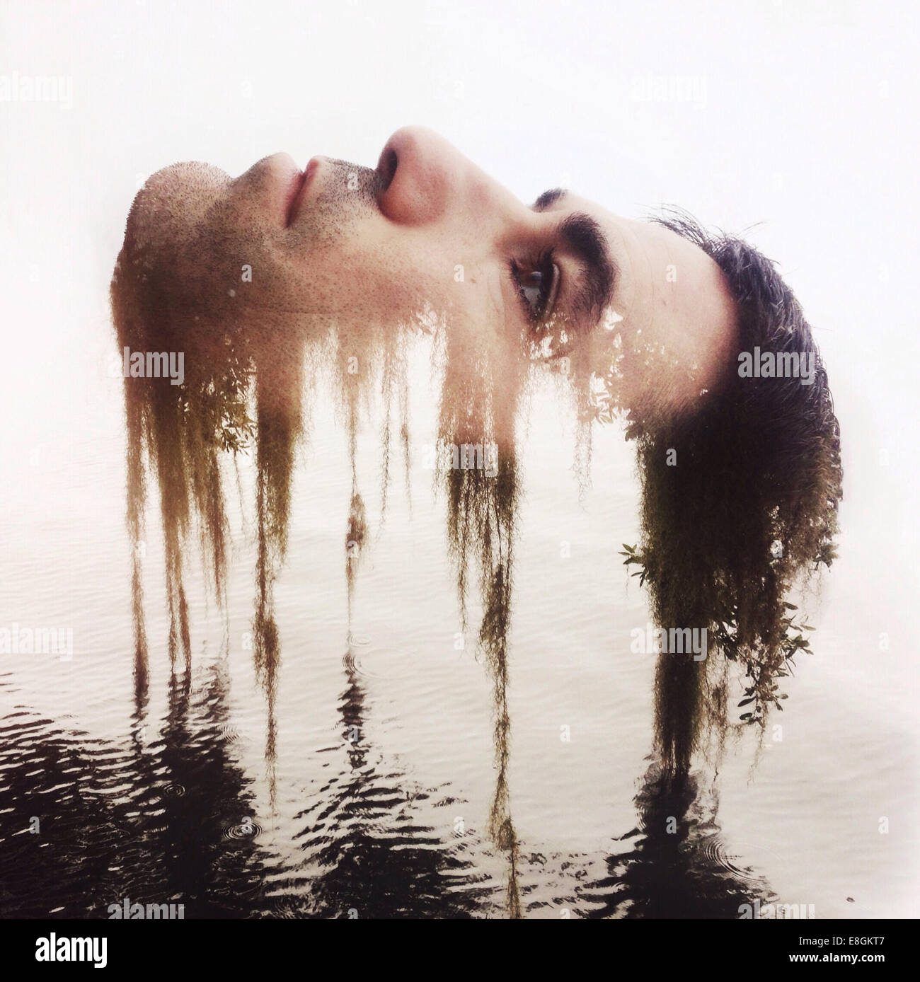 Digital composite of male head and nature - Stock Image